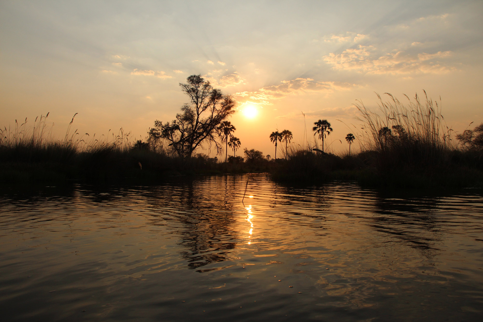 Botswana: Okavango Delta - Zonsondergang