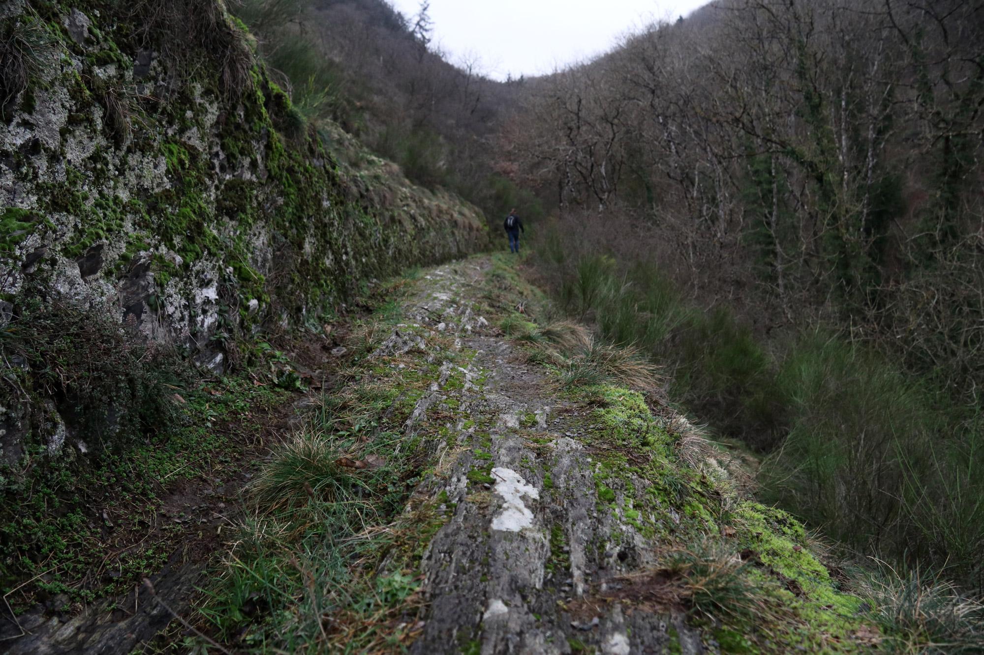 5x doen in Vianden - Maak een wandeltocht in de omgeving