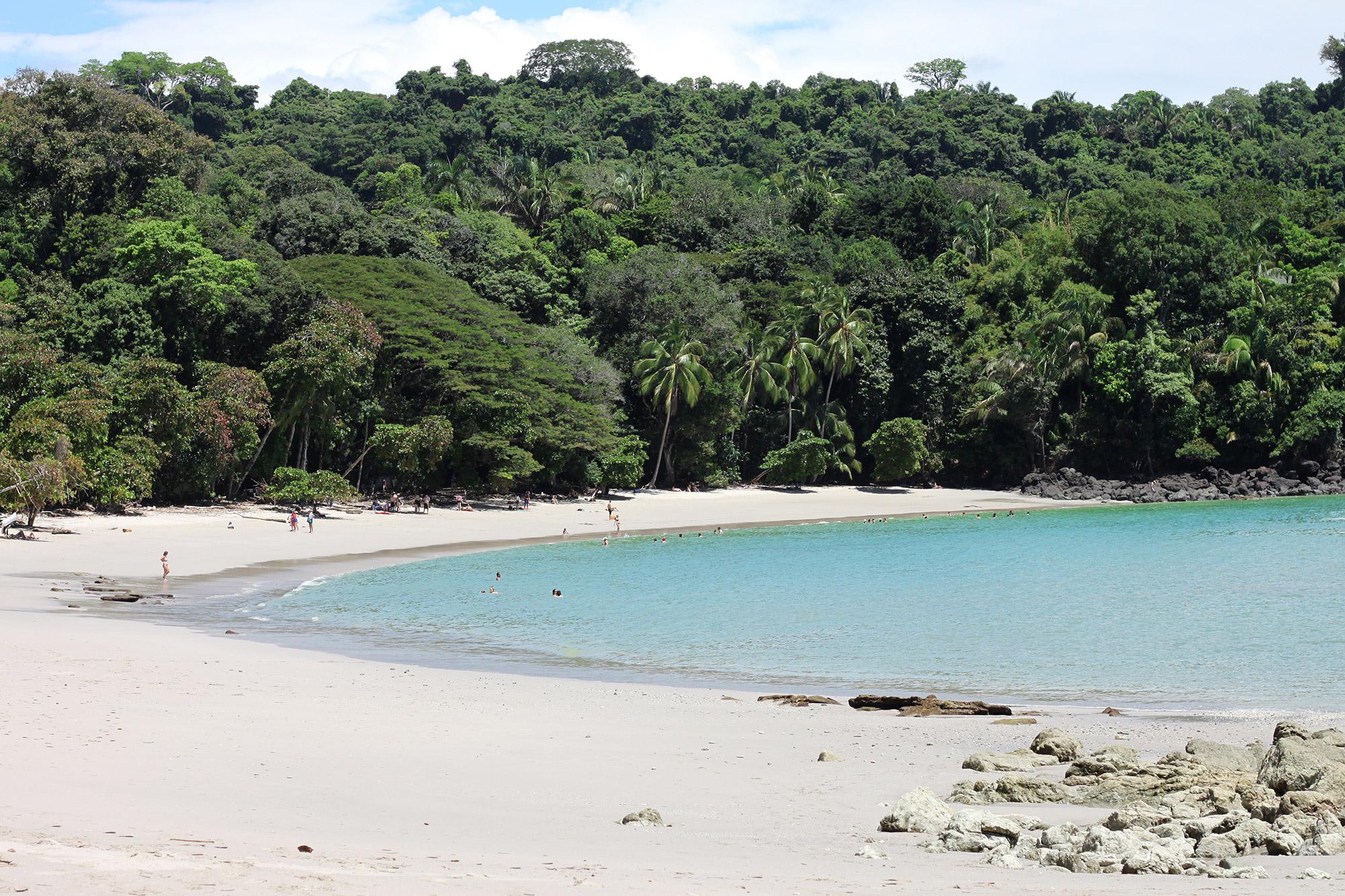 Onze favoriete nationale parken van Costa Rica - Parque Nacional Manuel Antonio