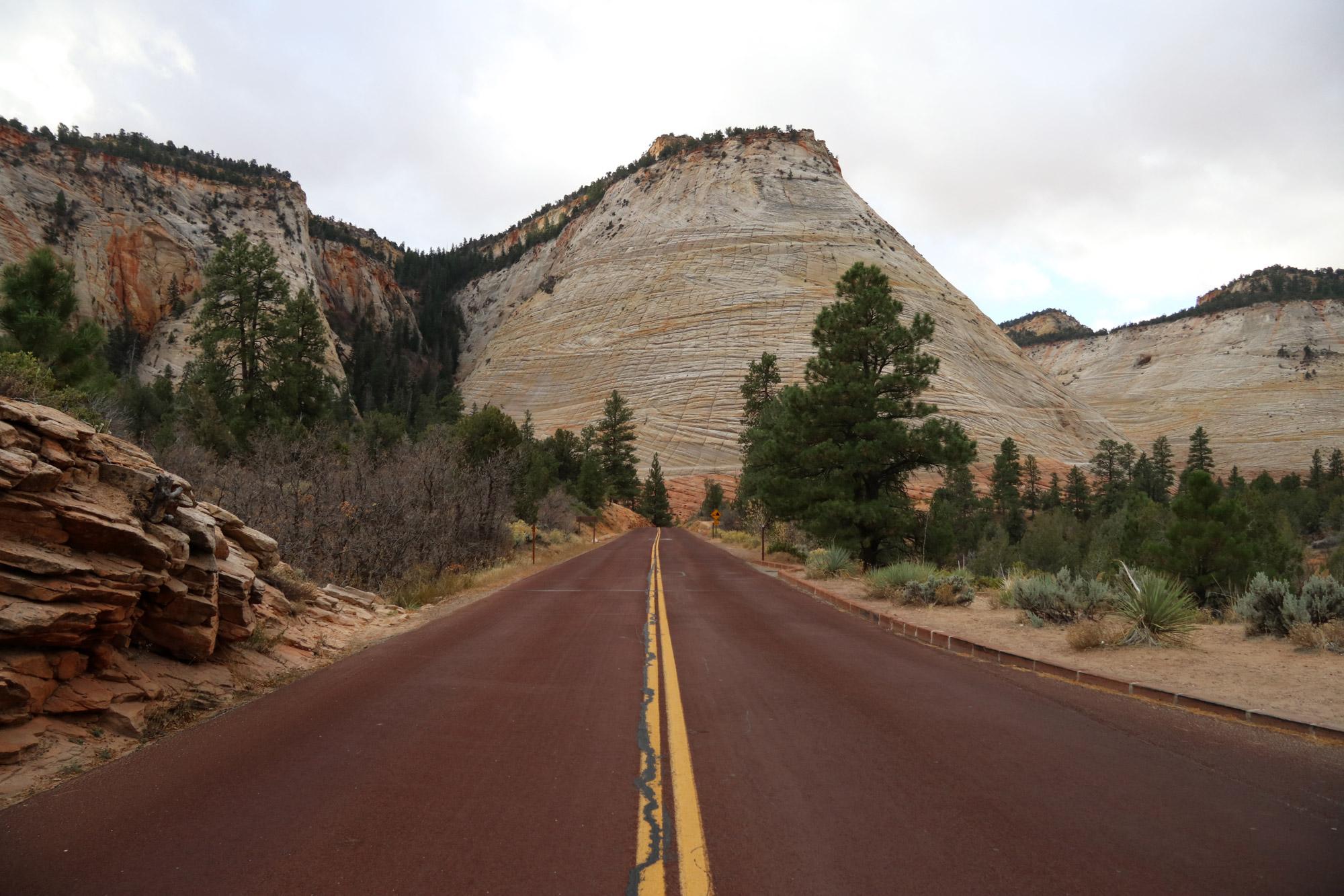 Amerika dag 16 - Zion National Park - Checkerboard Mesa