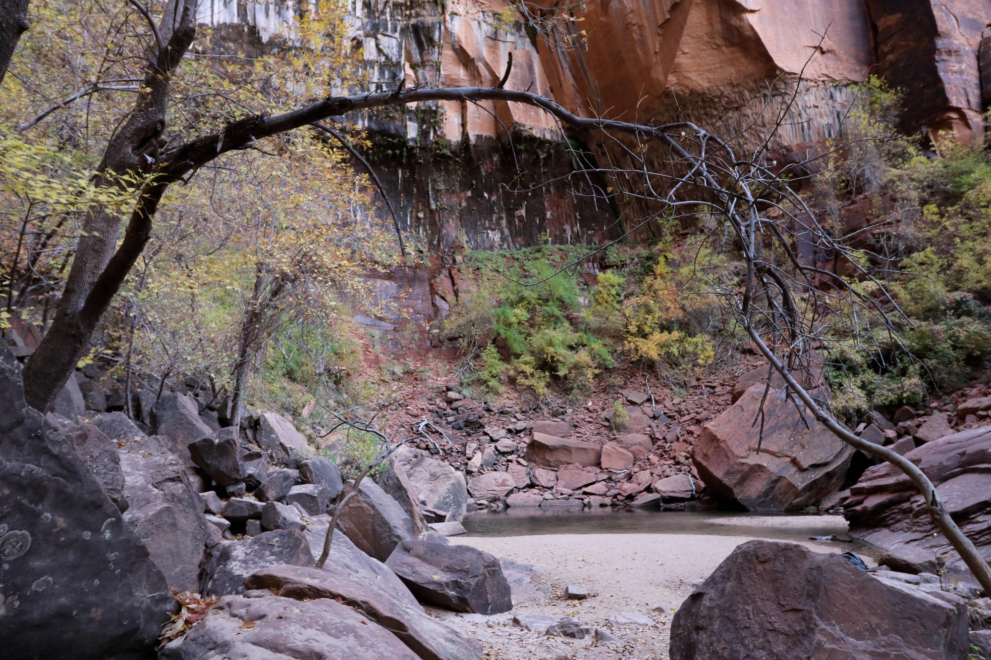 Amerika dag 16 - Zion National Park - Upper Emerald Pools