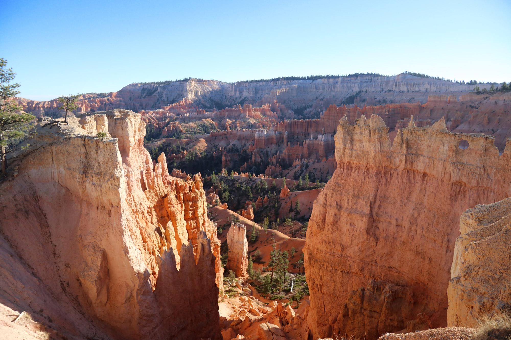 Amerika dag 14 - Bryce Canyon National Park - Queens Garden Trail