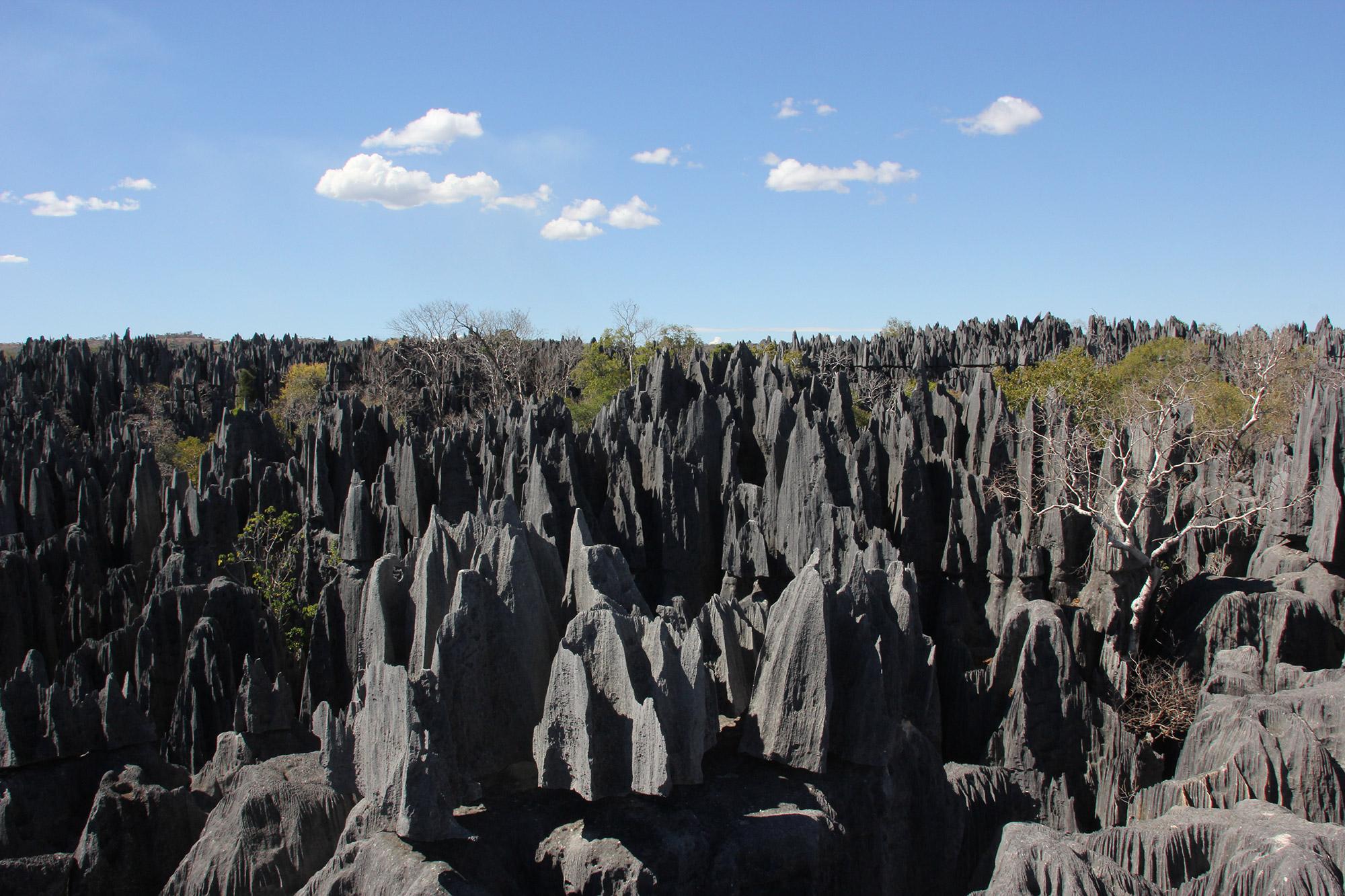 De volgers van Reizen & Reistips: Eric en Claudia - Tsingy de Bemaraha in Madagascar