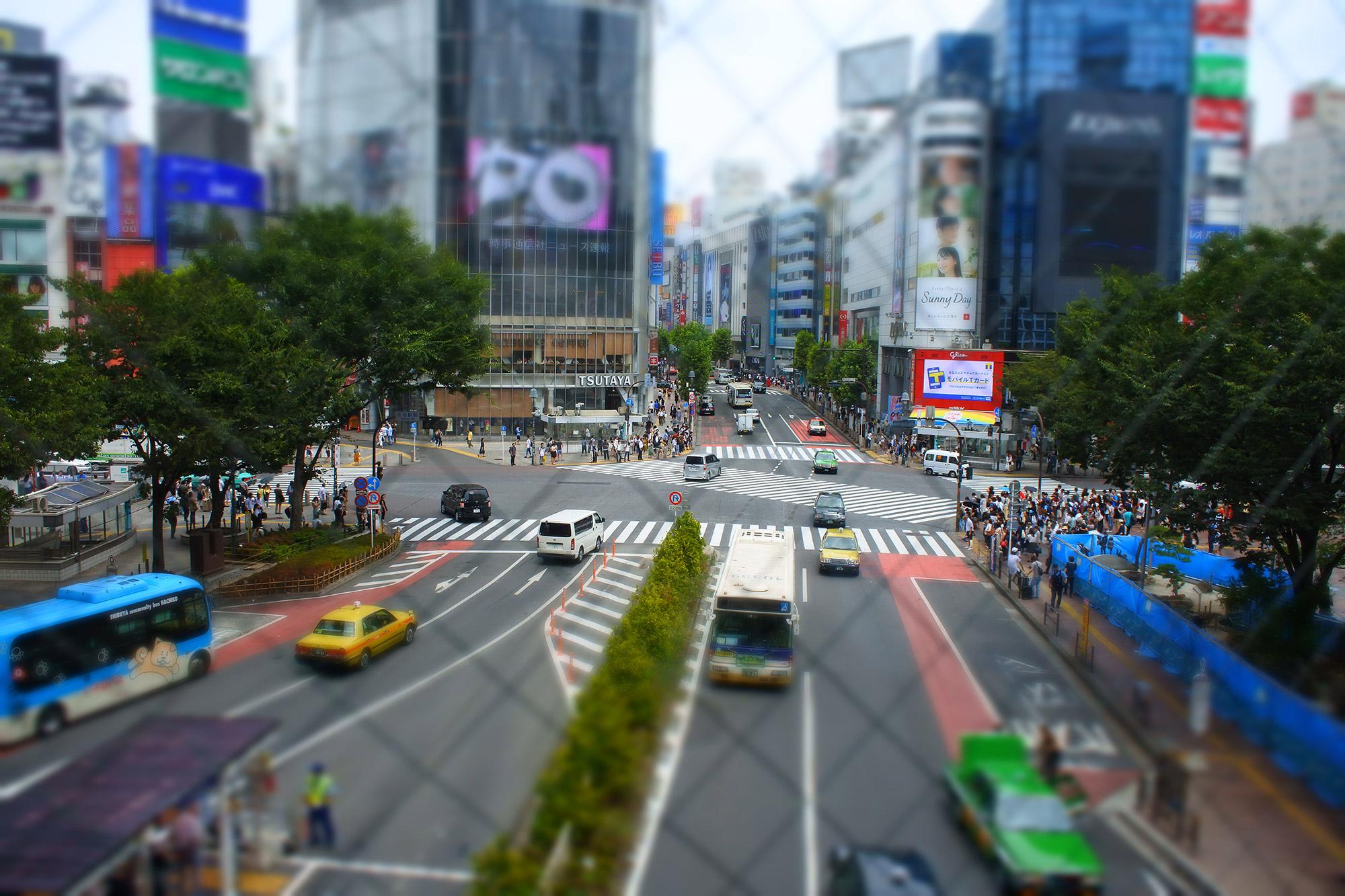 De volgers van Reizen & Reistips: Erik en Judith - Shibuya Crossing in Tokyo