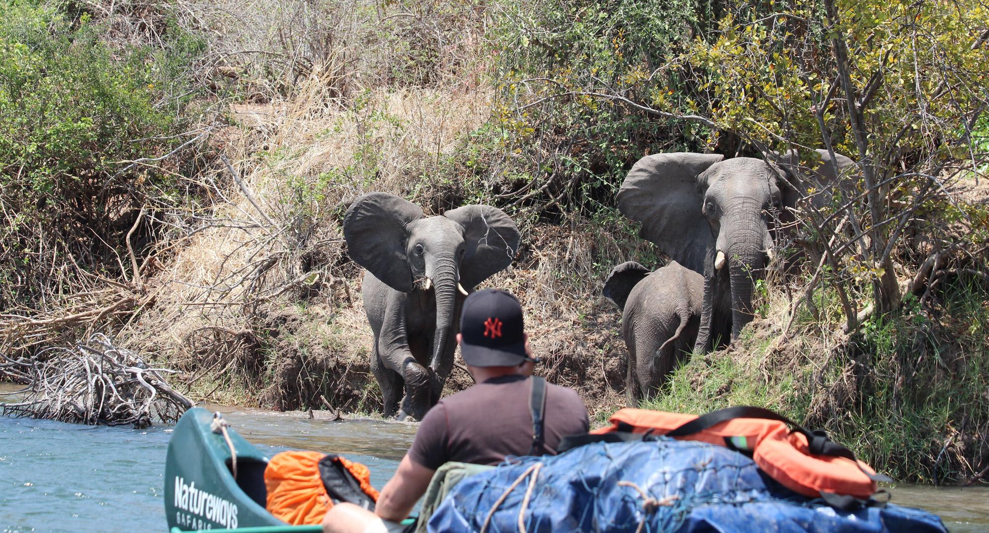 Noreen - Zimbabwe - Zambezi River