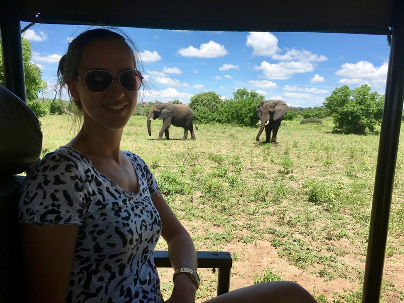 Djura - Wilde dieren in Afrika