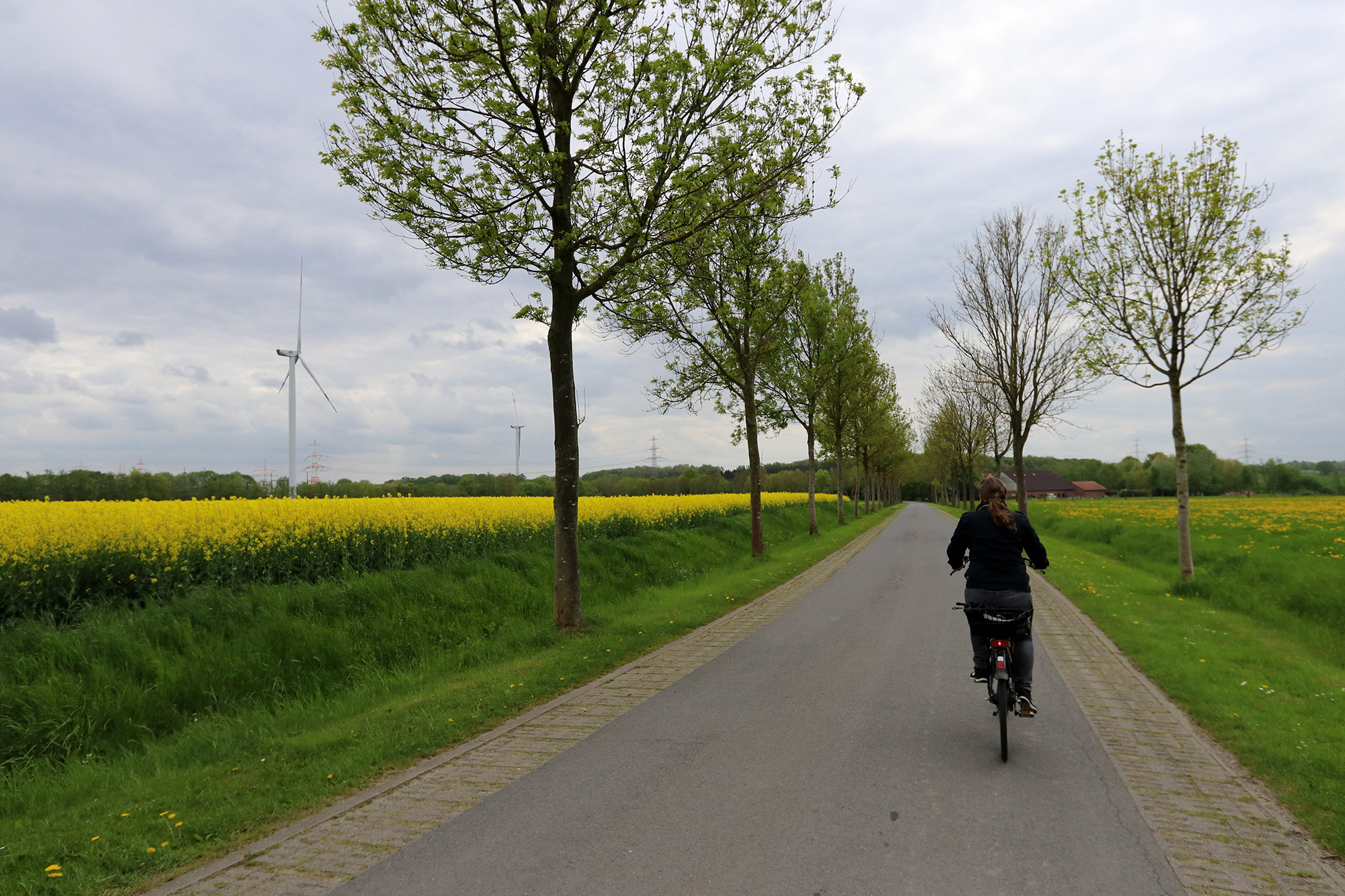 Weekendje weg Münster - Fietsen buiten het centrum van Münster