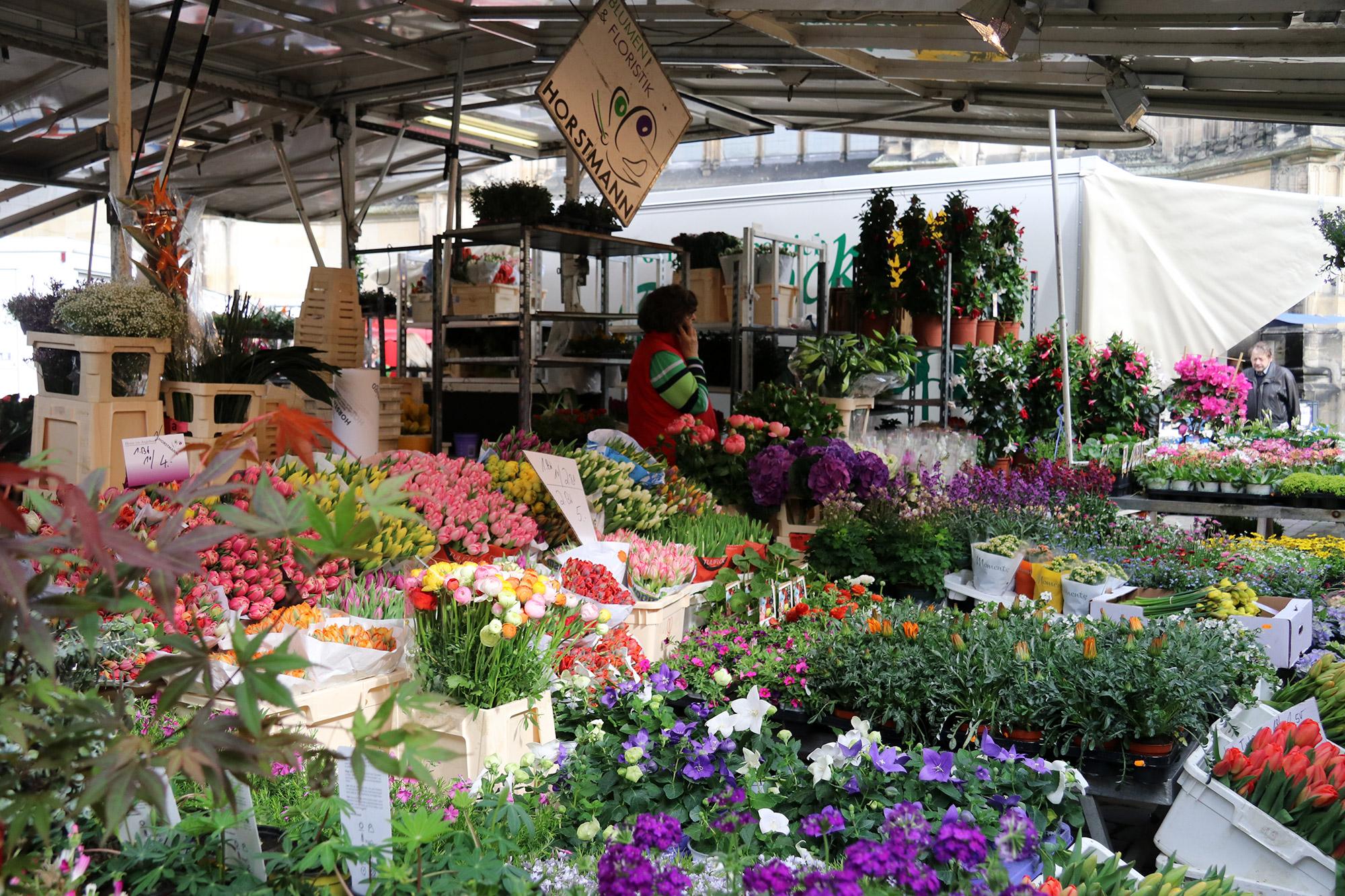 Weekendje weg Münster - Markt van Münster op zaterdag