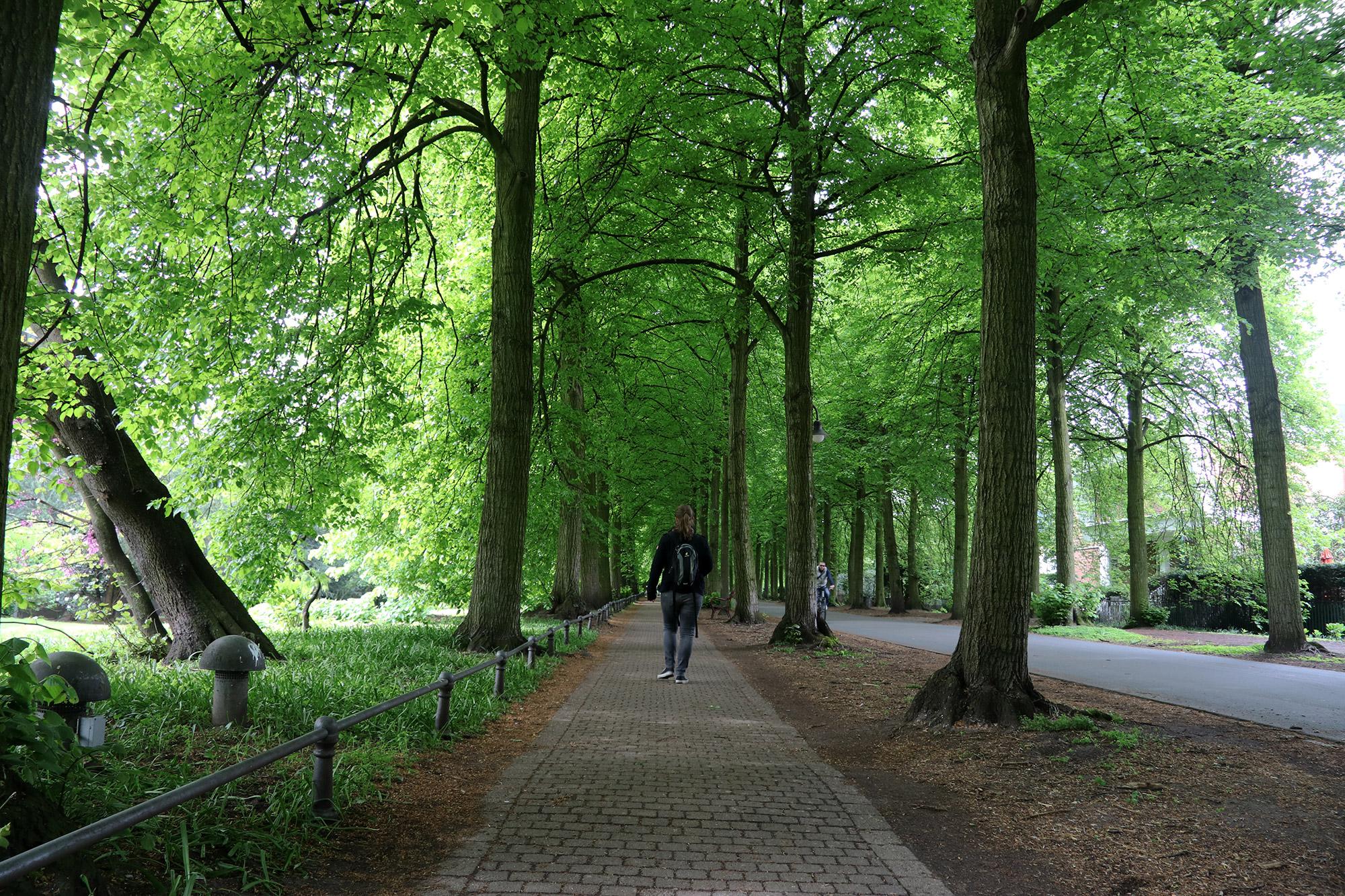 Weekendje weg Münster - Promenade