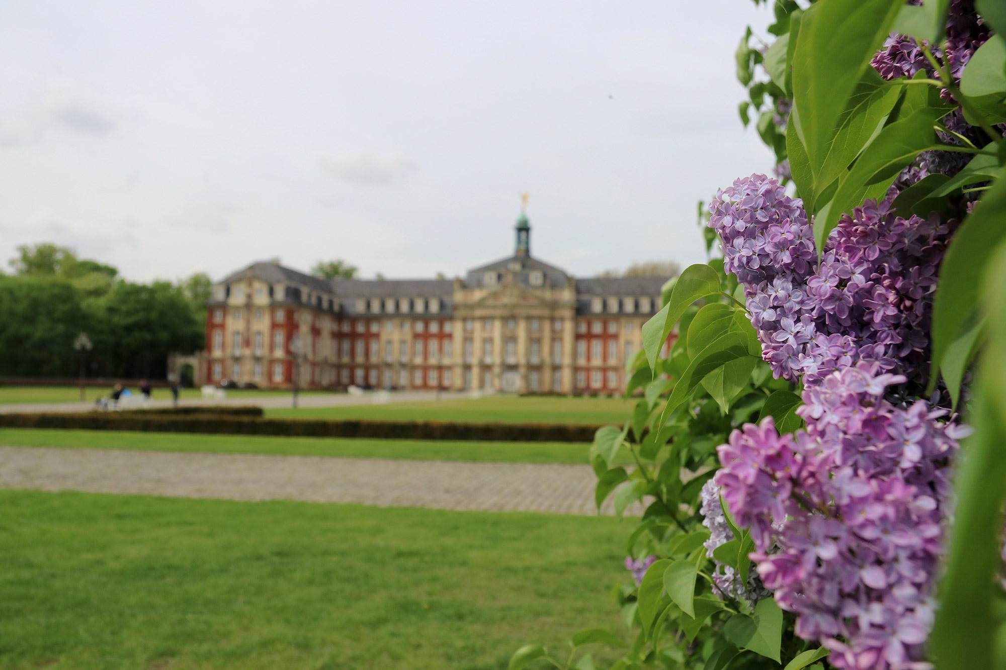 Weekendje weg Münster - Schloss Münster