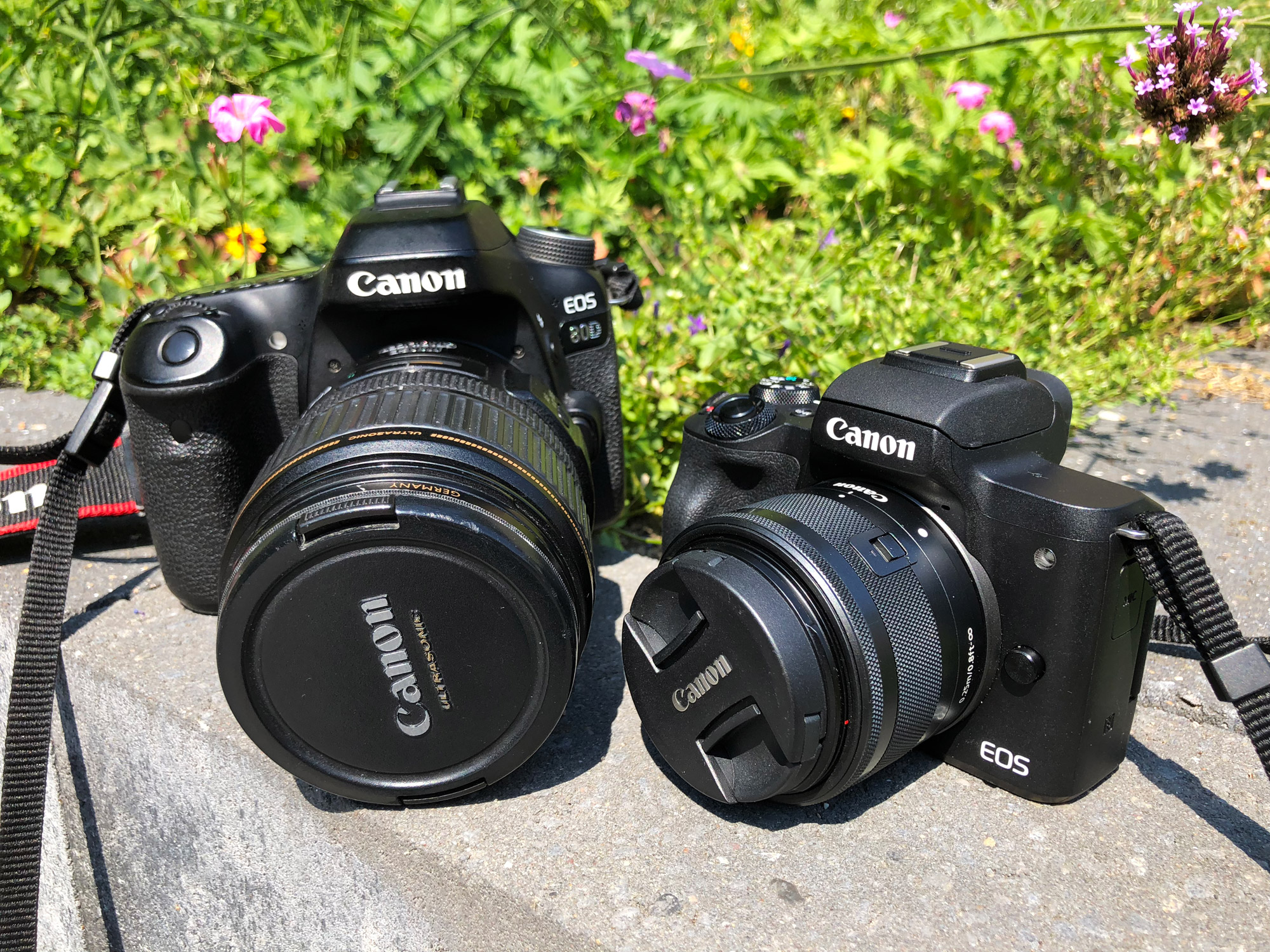 Review: Canon EOS M50