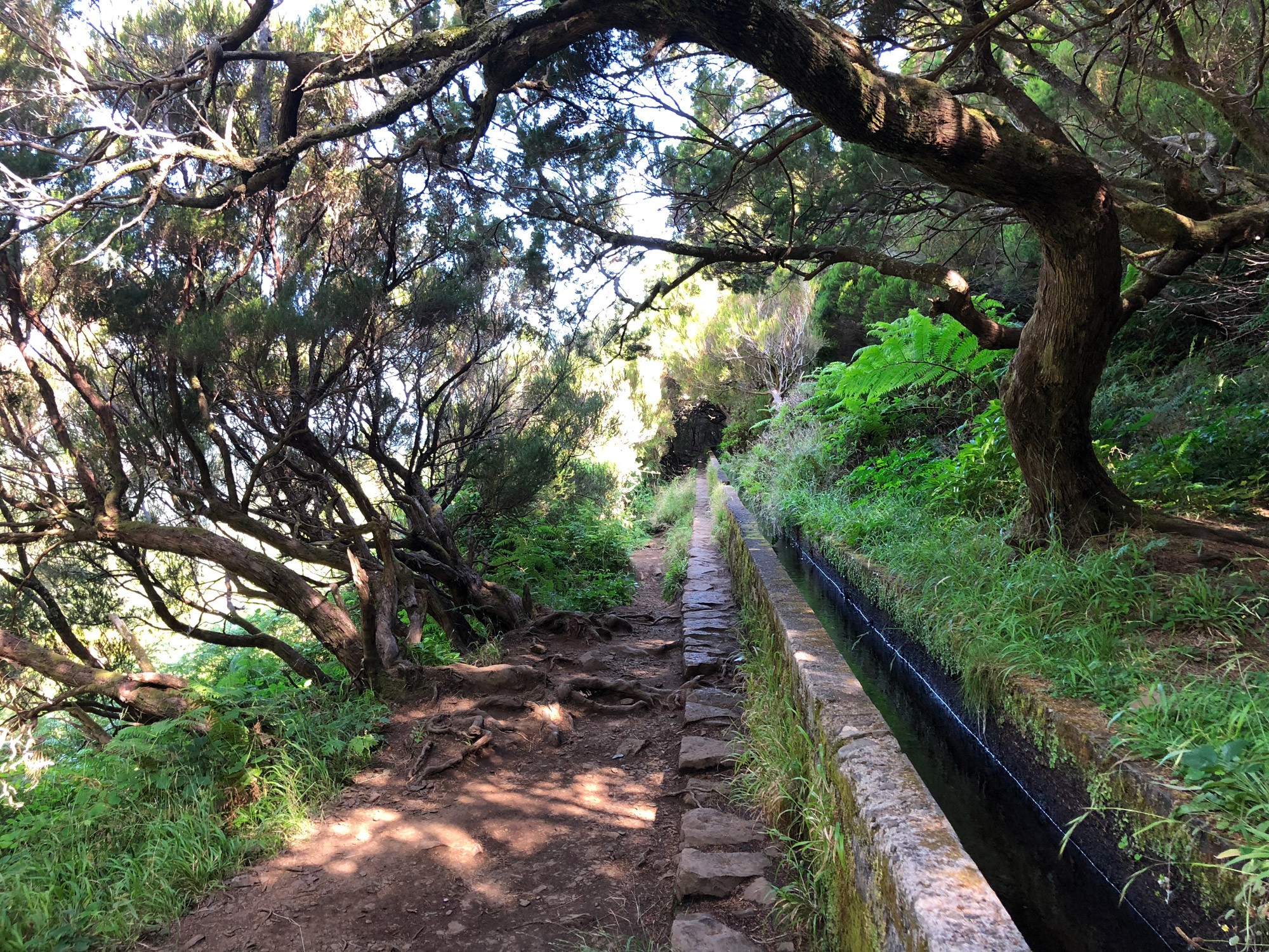 Madeira in 10 beelden - Levada wandelingen