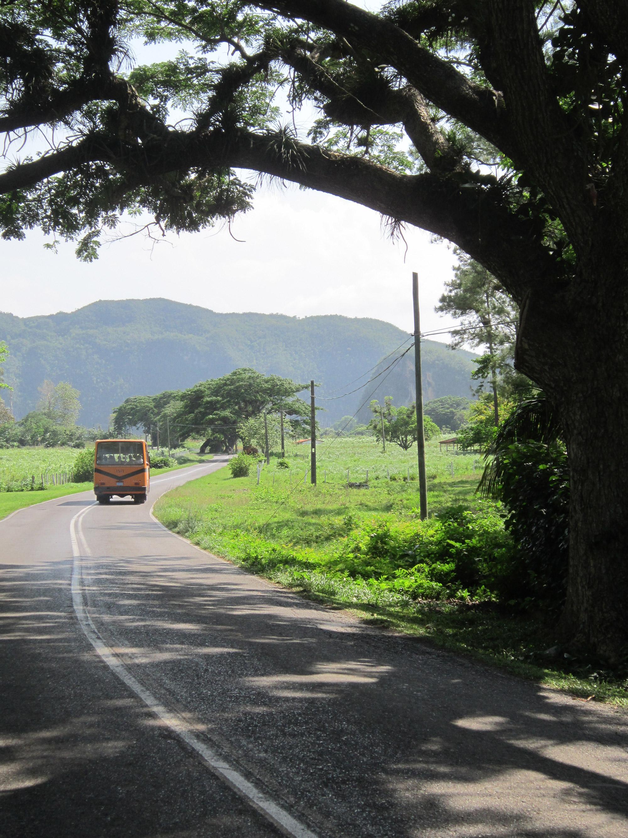 Shirley - Valle de Vinales - Cuba