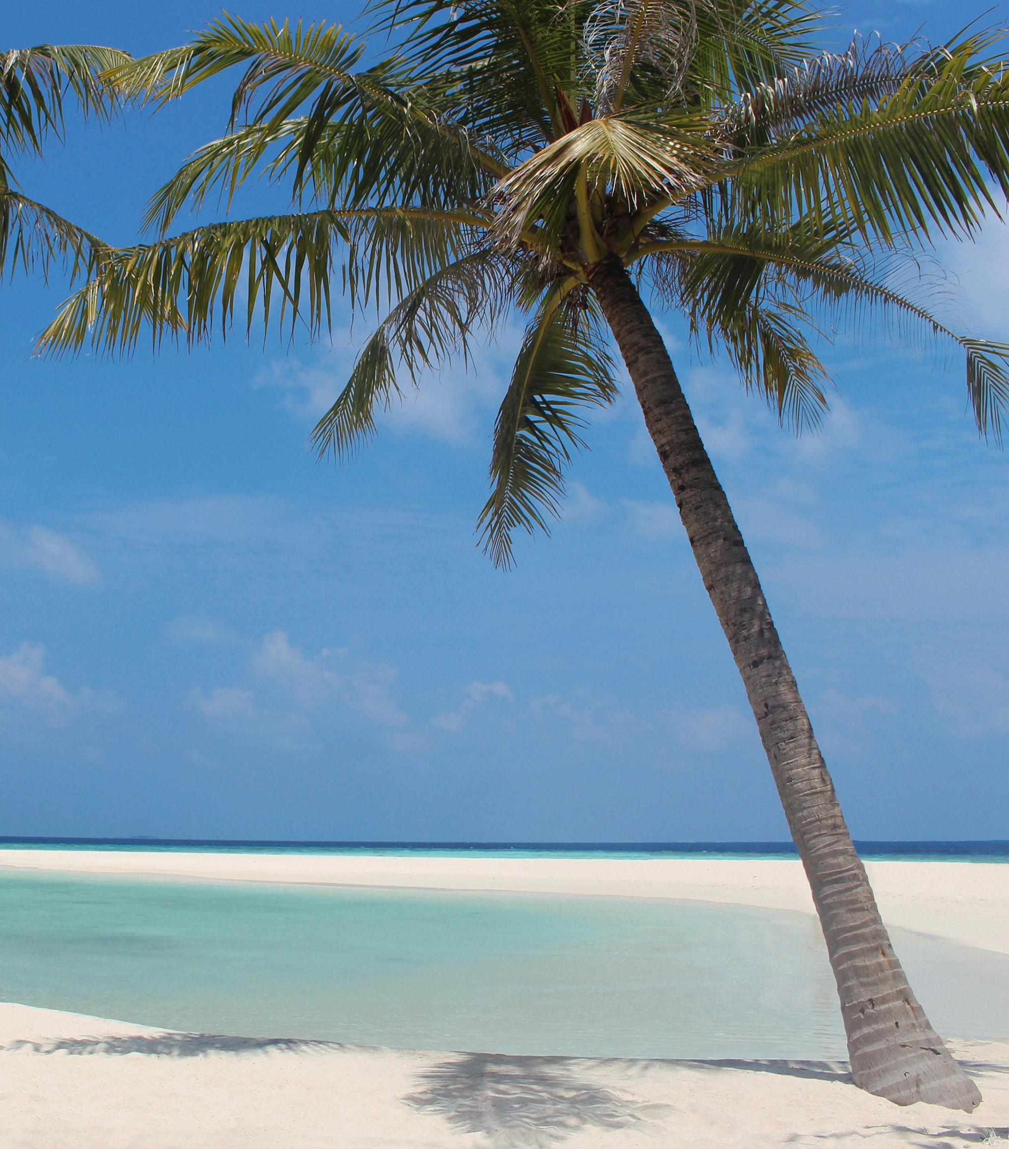 Azië blijft mijn favoriete continent. De stranden van de Malediven zijn prachtig