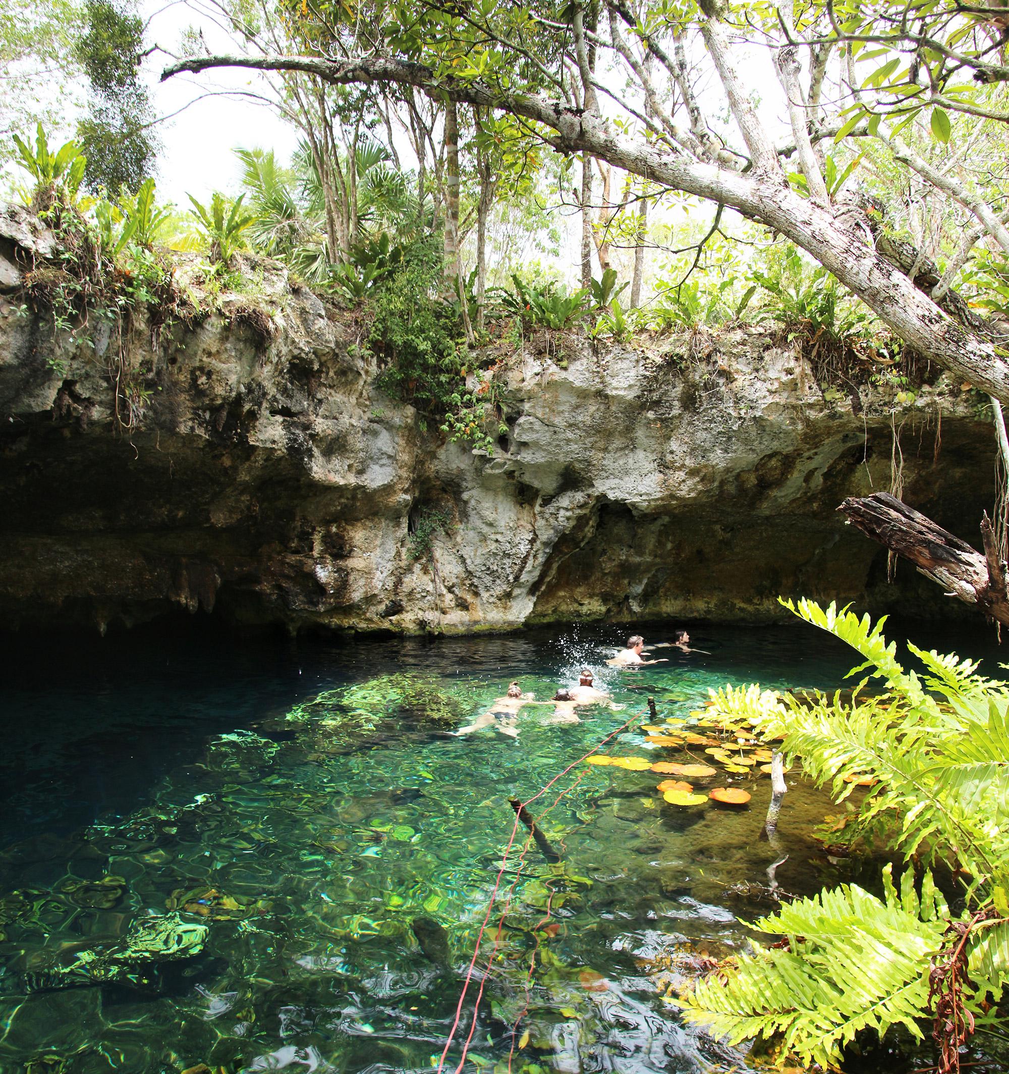 Zwemmen en snorkelen in Gran Cenote, Mexico