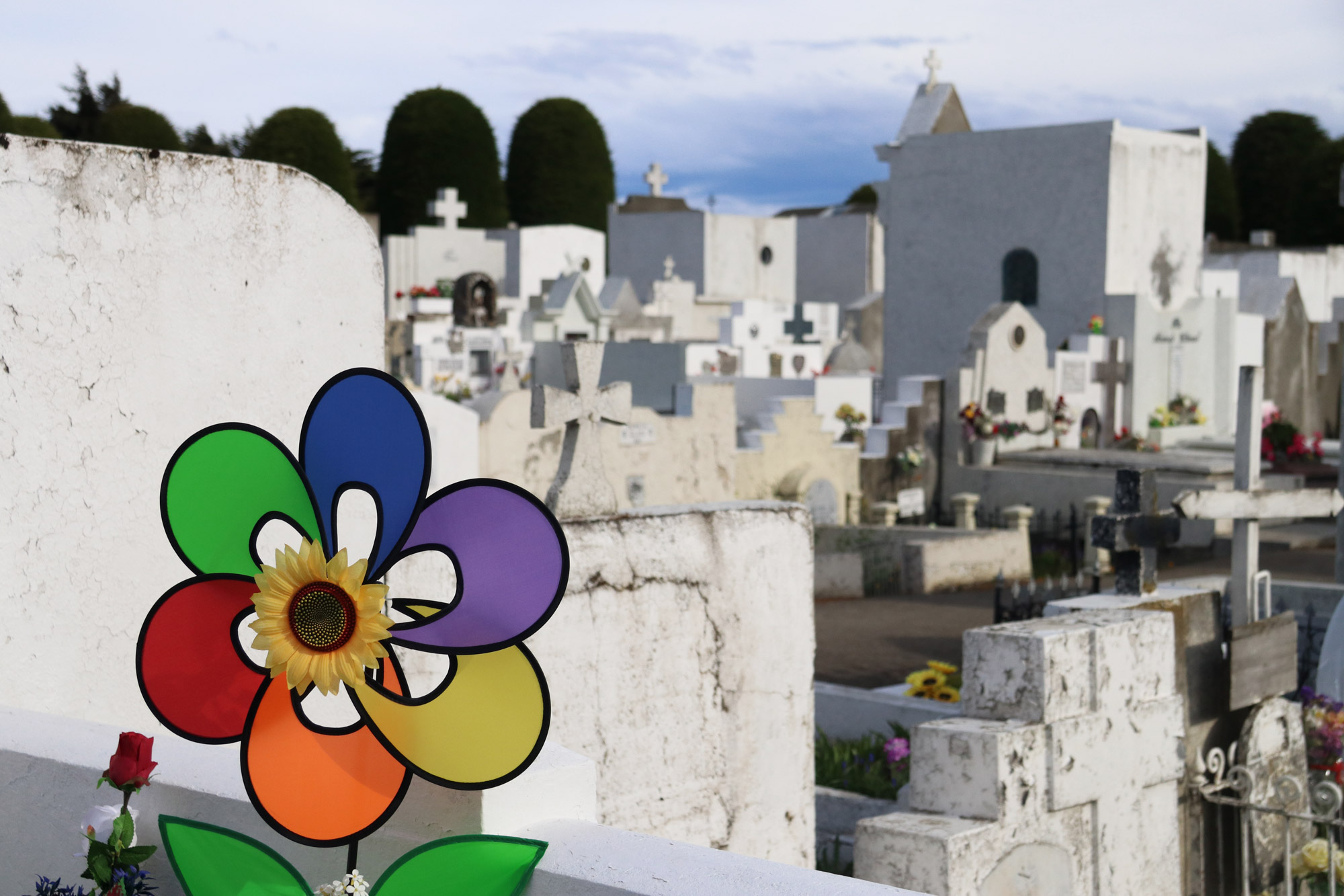 Patagonië - Punta Aremas - Cementerio Muncipal