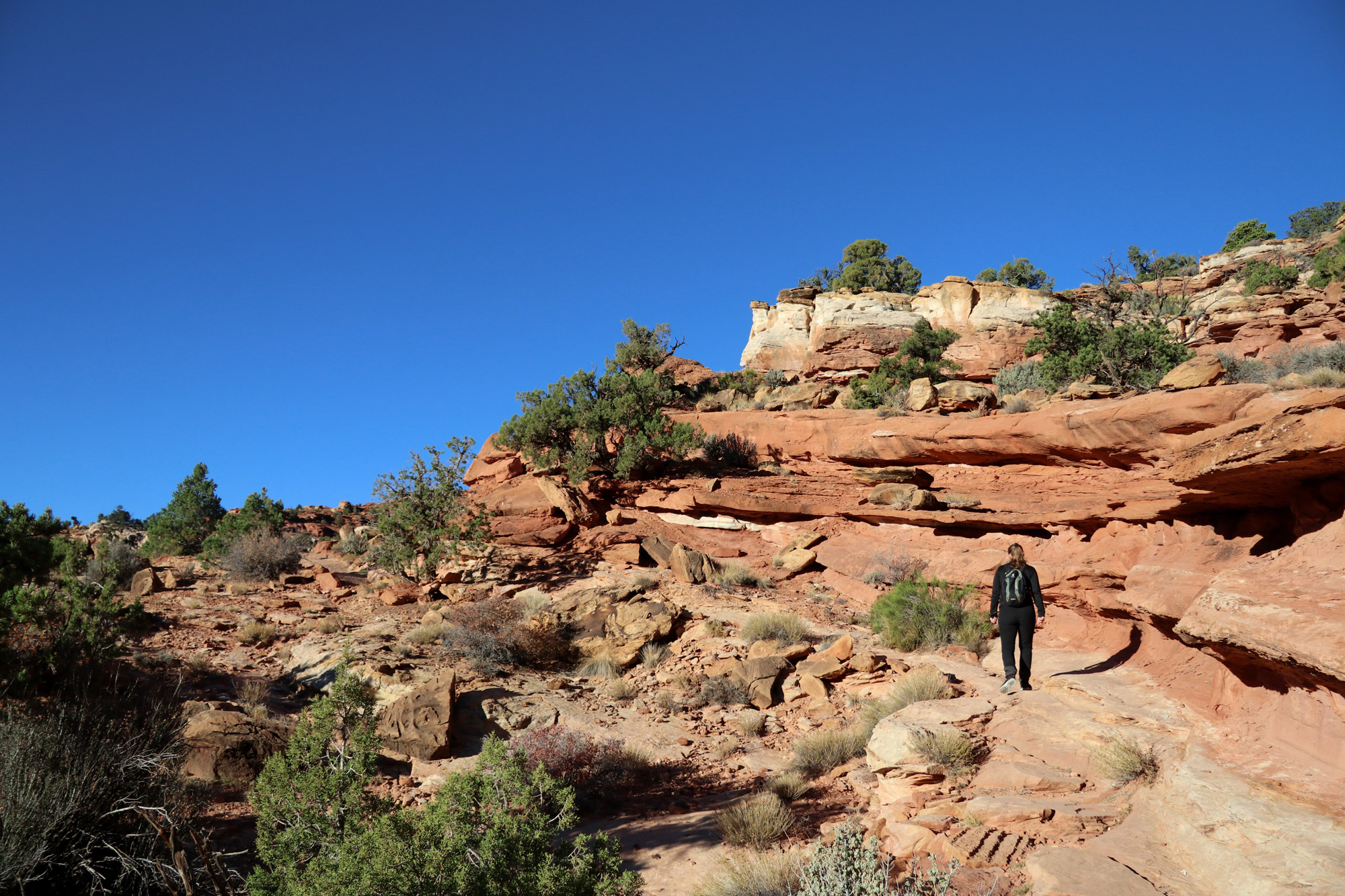 Cassidy Arch Trail - Capitol Reef National Park - Amerika