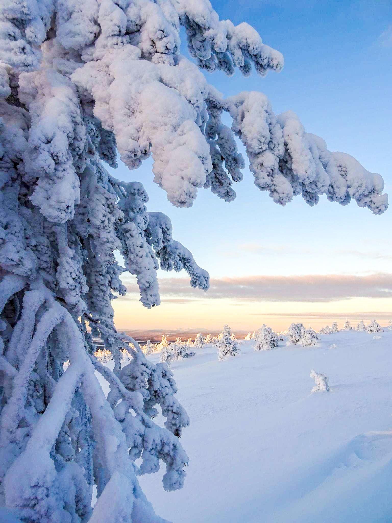 Jolanda - Winter wonderland Lapland