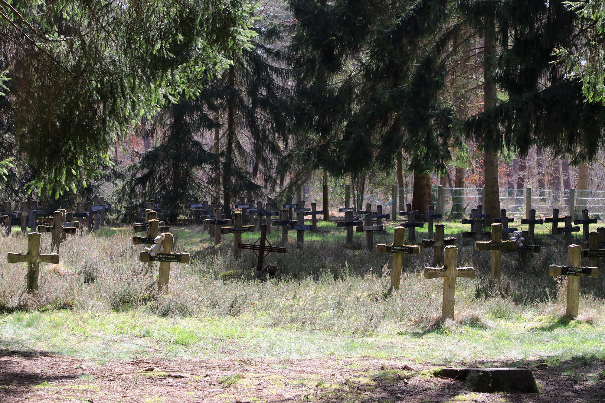 Urbex: Krankzinnigenkerkhof