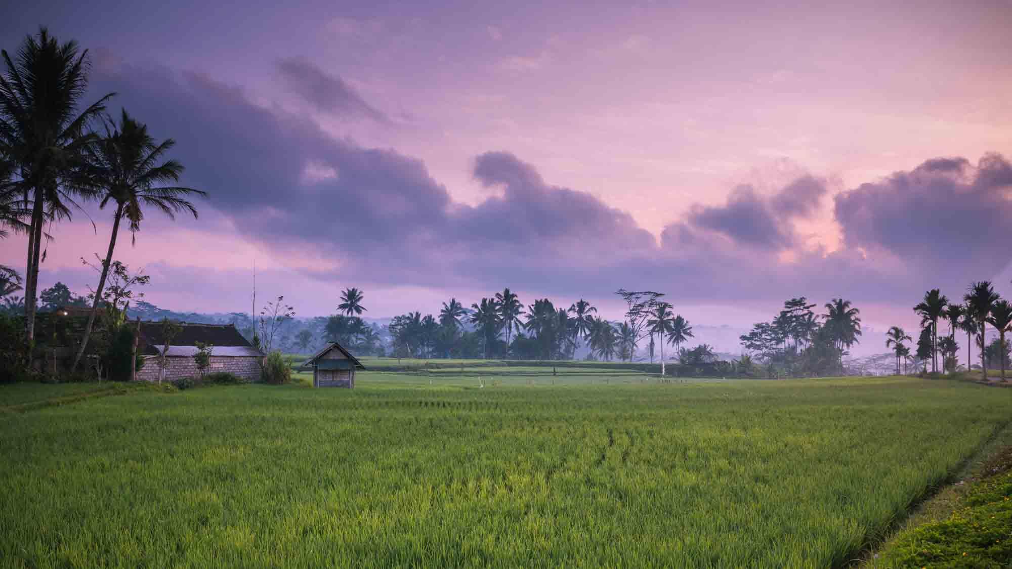 De volgers van Reizen & Reistips: Manon - Zonsopkomst in Indonesië