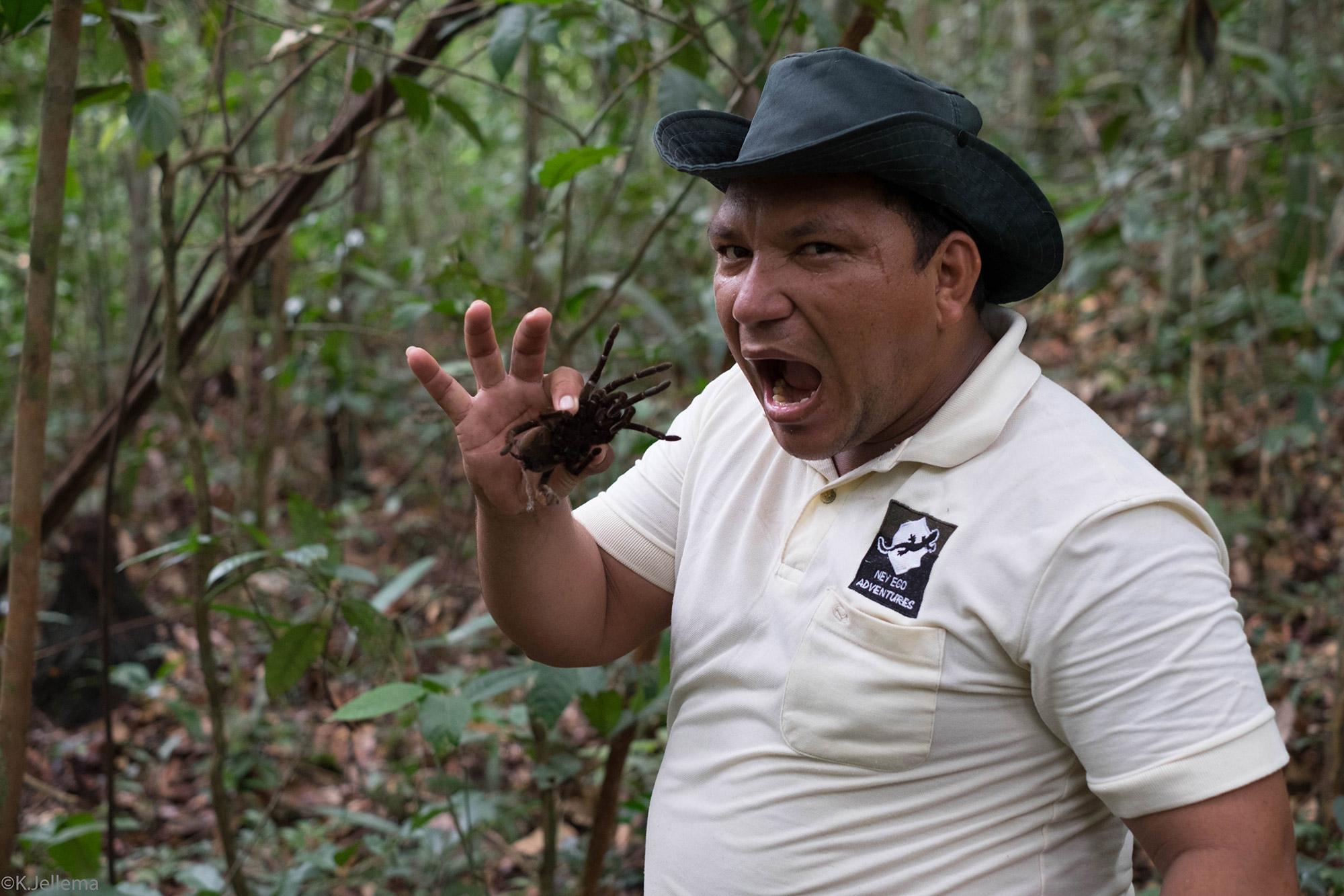 Katinka - Amazone