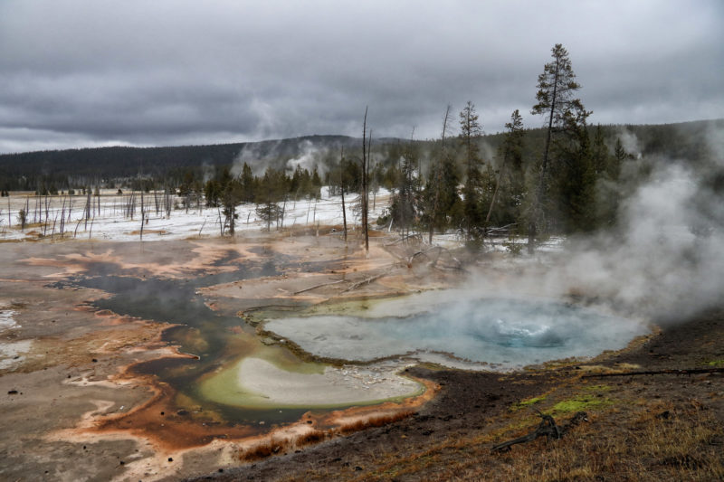 De hoogtepunten van Yellowstone National Park - Lower Geyser Basin