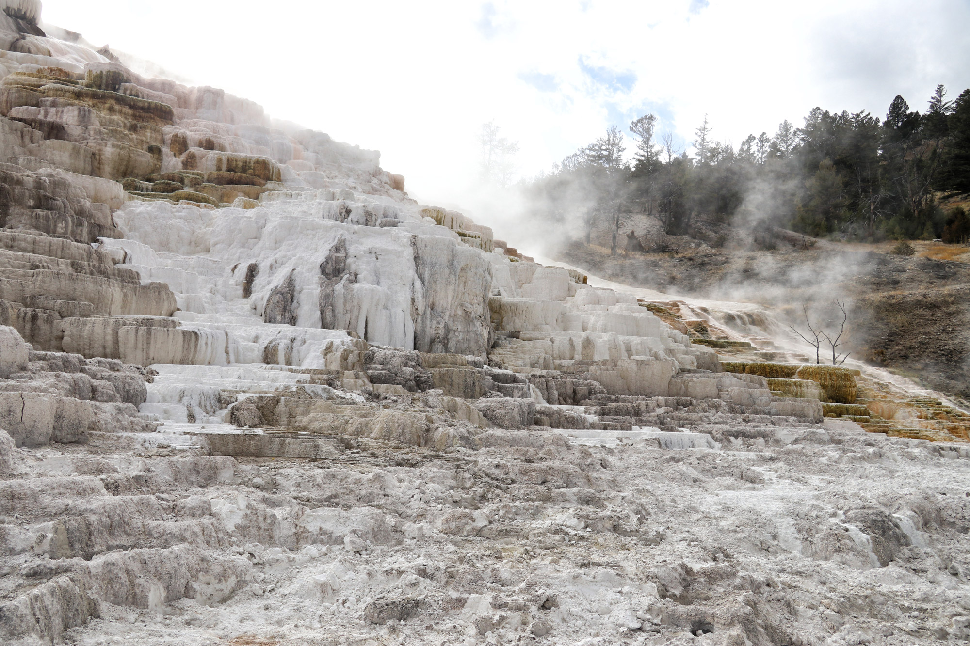De hoogtepunten van Yellowstone National Park - Mammoth Hot Springs