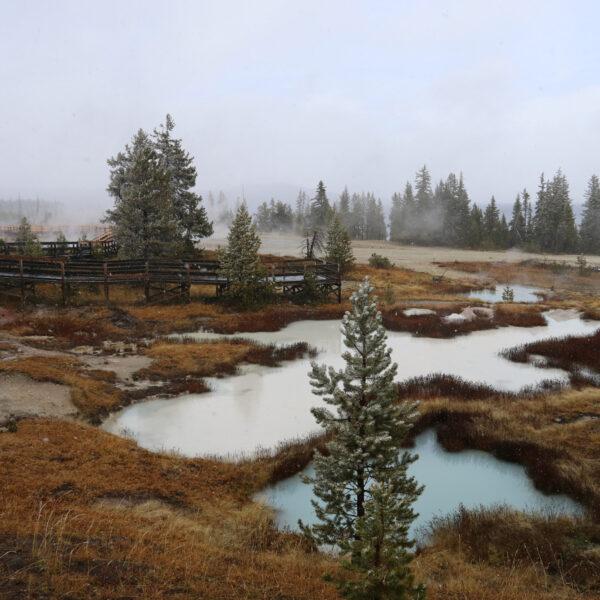 De hoogtepunten van Yellowstone National Park - West Thumb Geyser Basin