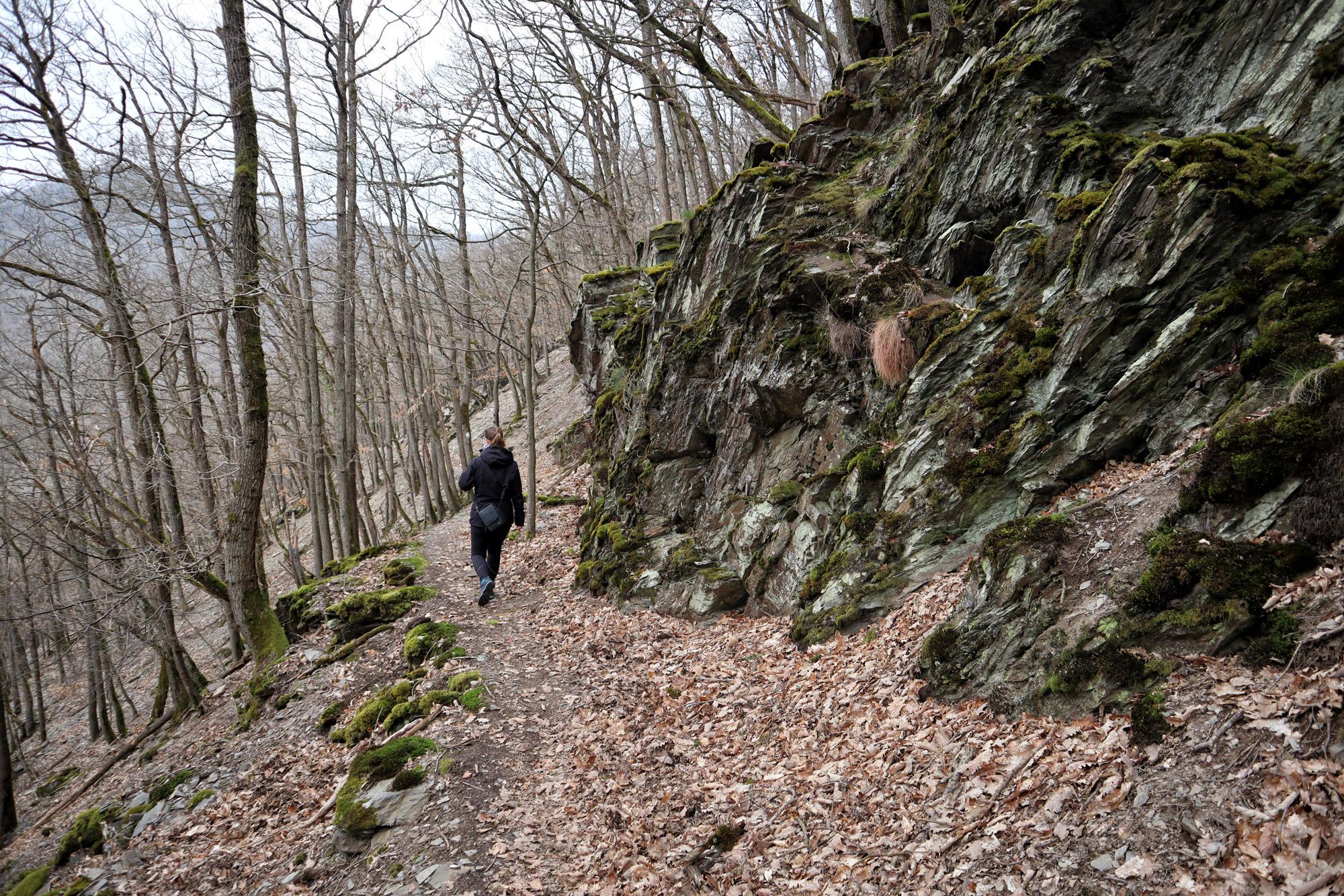 Wandeling: Seitensprung, de Cochemer Ritterrunde
