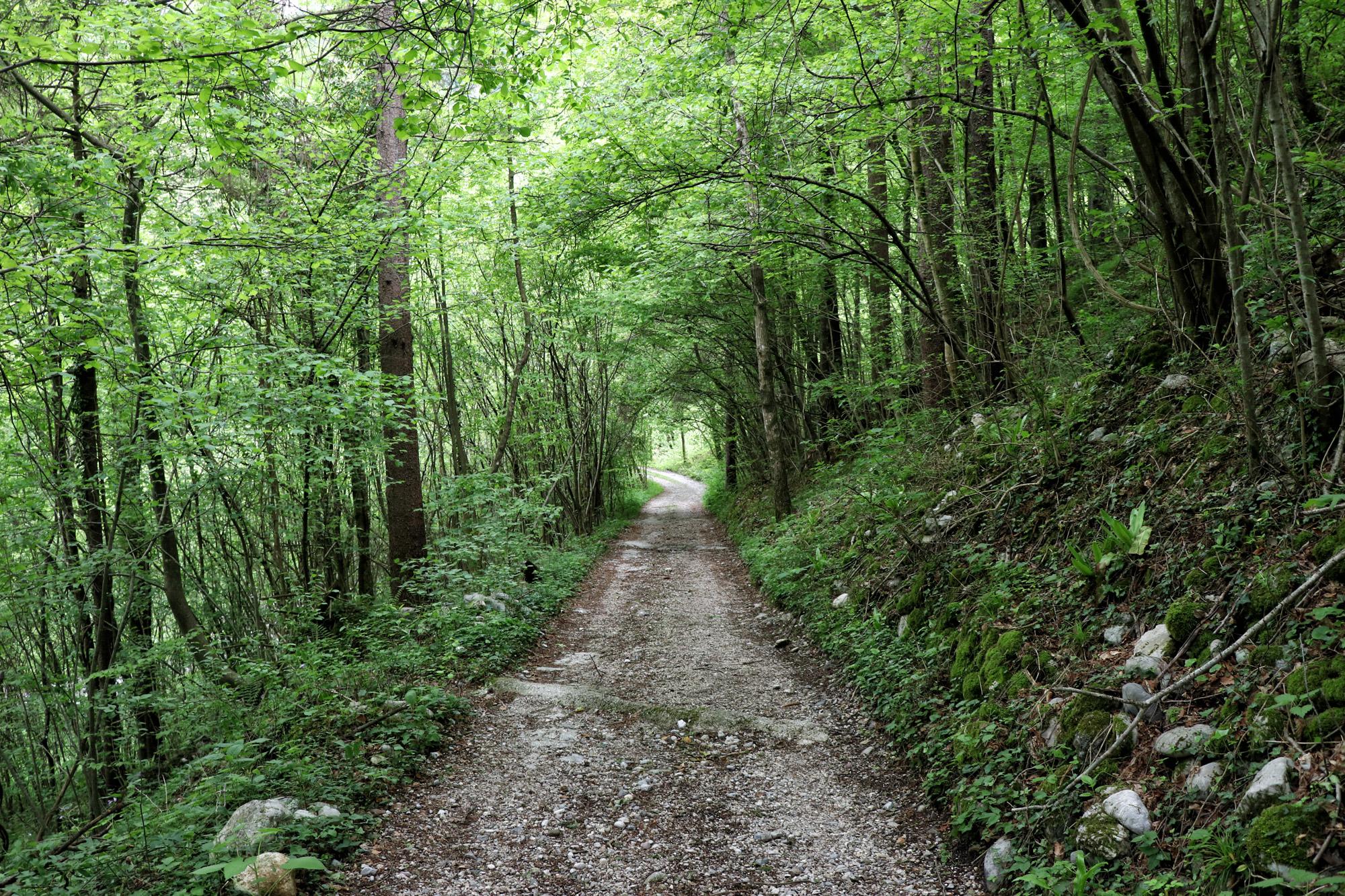 Soška pot wandeling in Slovenië - Startpunt bij Trnovo