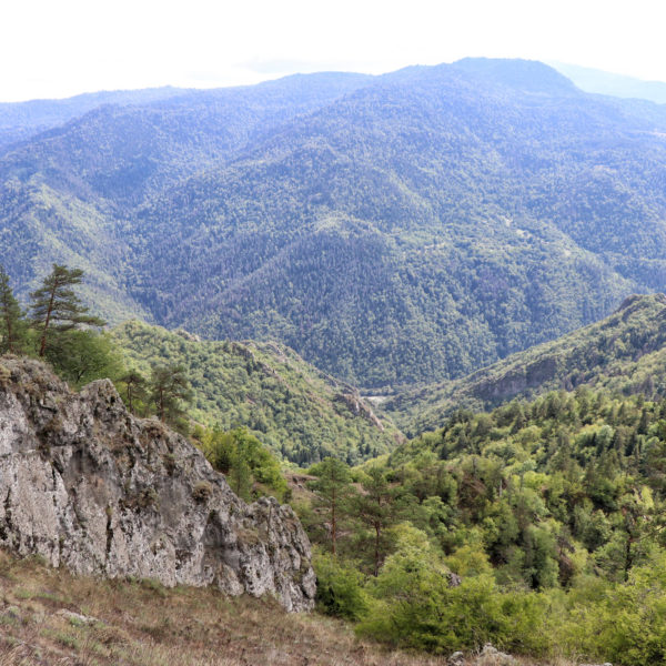 Georgie Reisverslag - Likani Valley Trail in Borjomi National Park