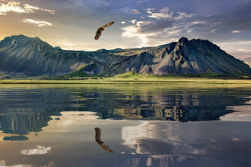 Singlereizen - Nieuw-Zeeland