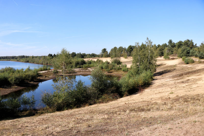 Een terugblik op reisjaar 2019 - Nationaal Park Maasduinen