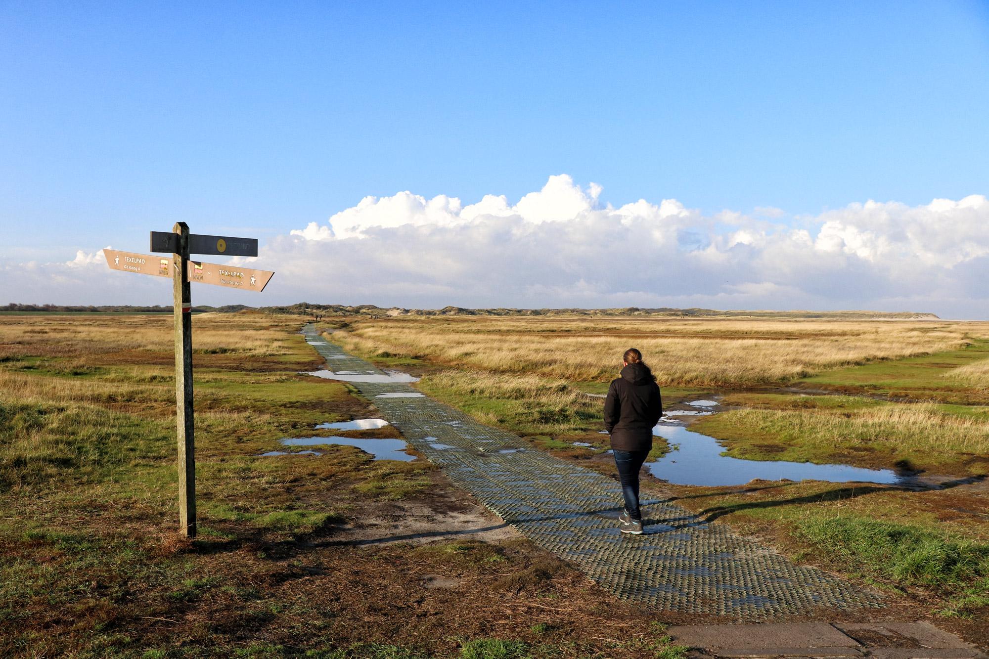 Texel - De Slufter