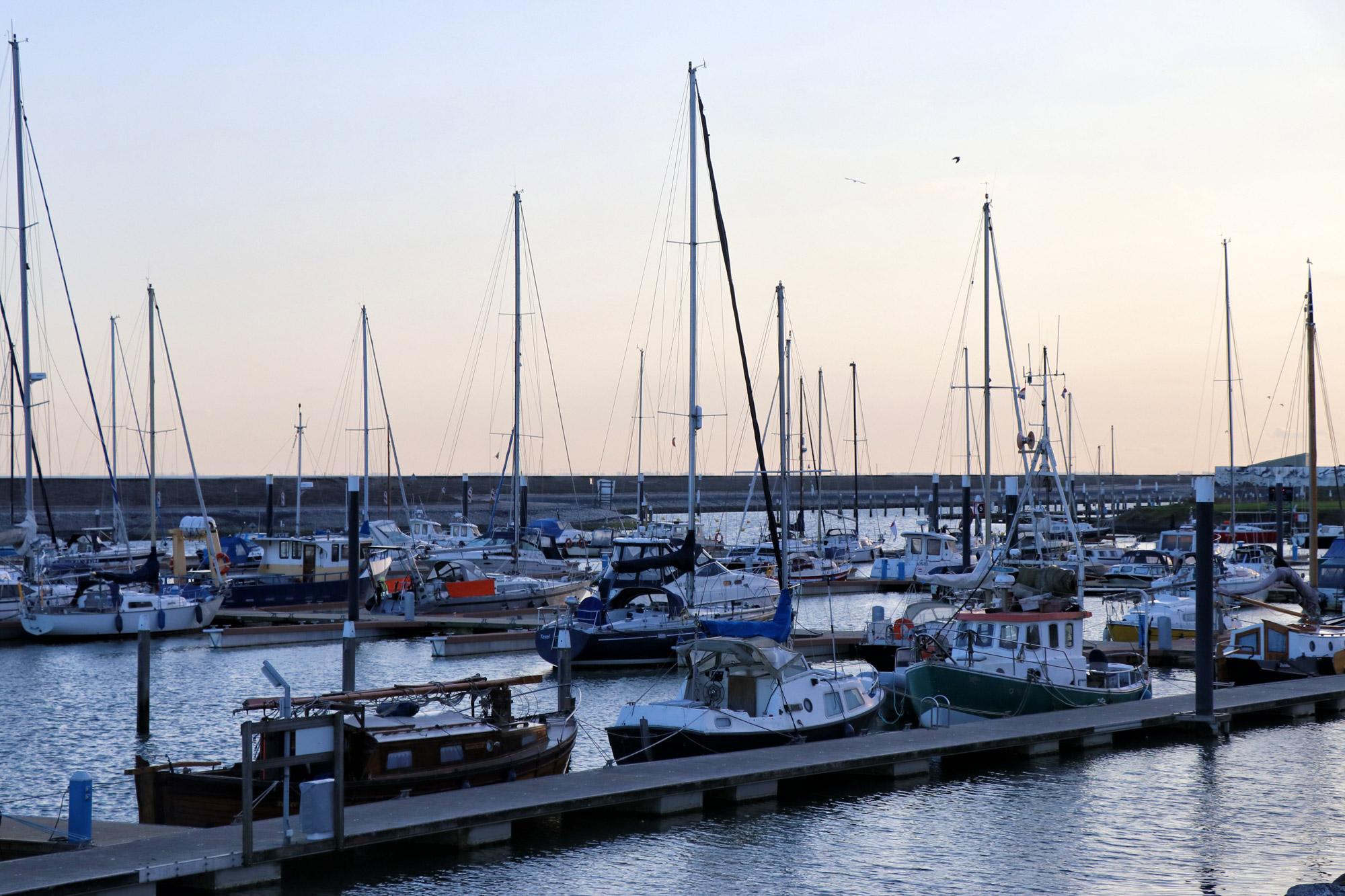 Texel - Haven van Oudeschild