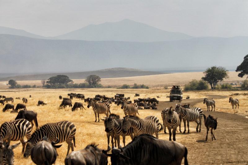 UNESCO Werelderfgoedlijst - Ngorongoro krater - Tanzania