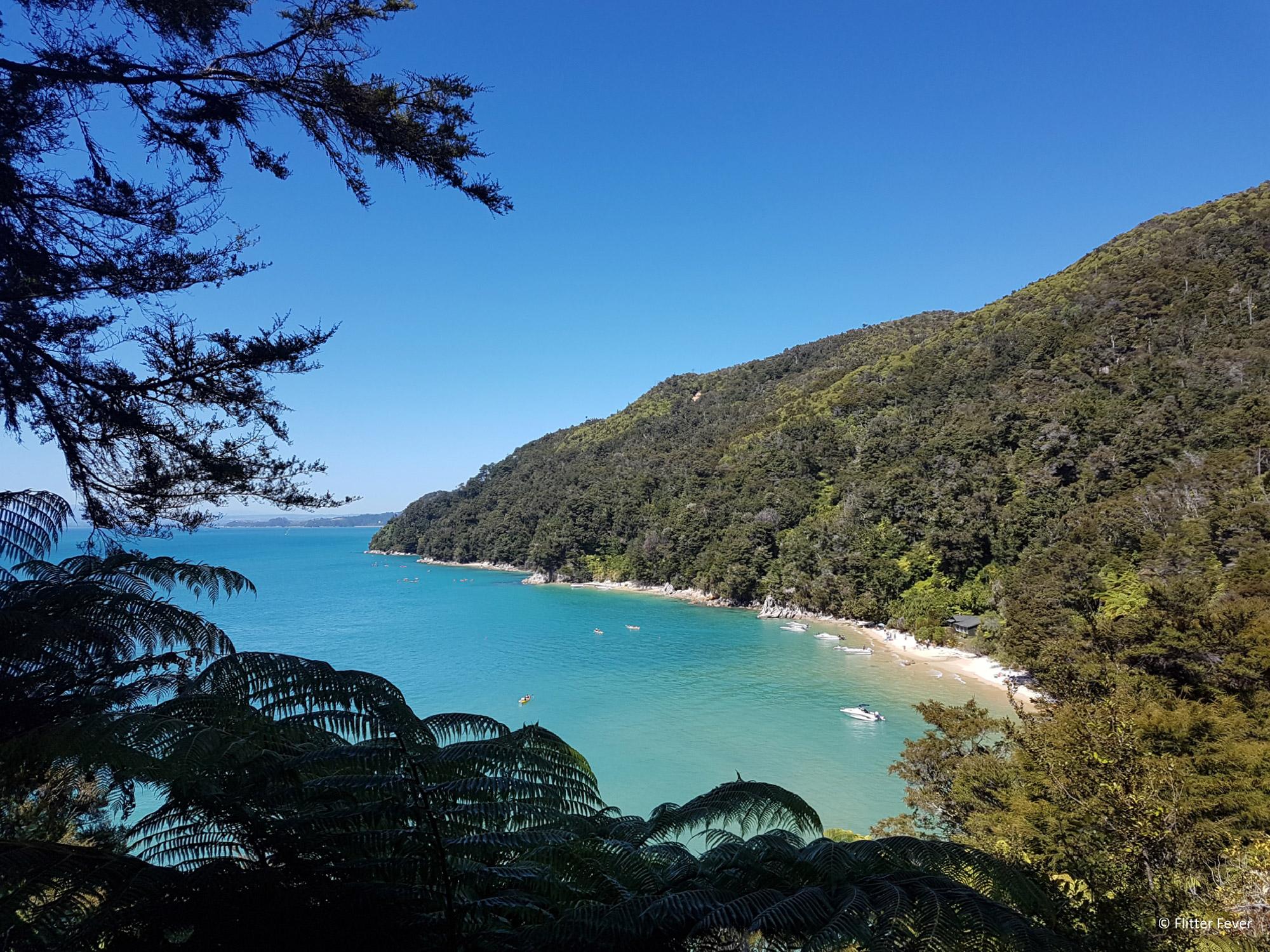 Flitter Fever - Tasman National Park in Nieuw-Zeeland