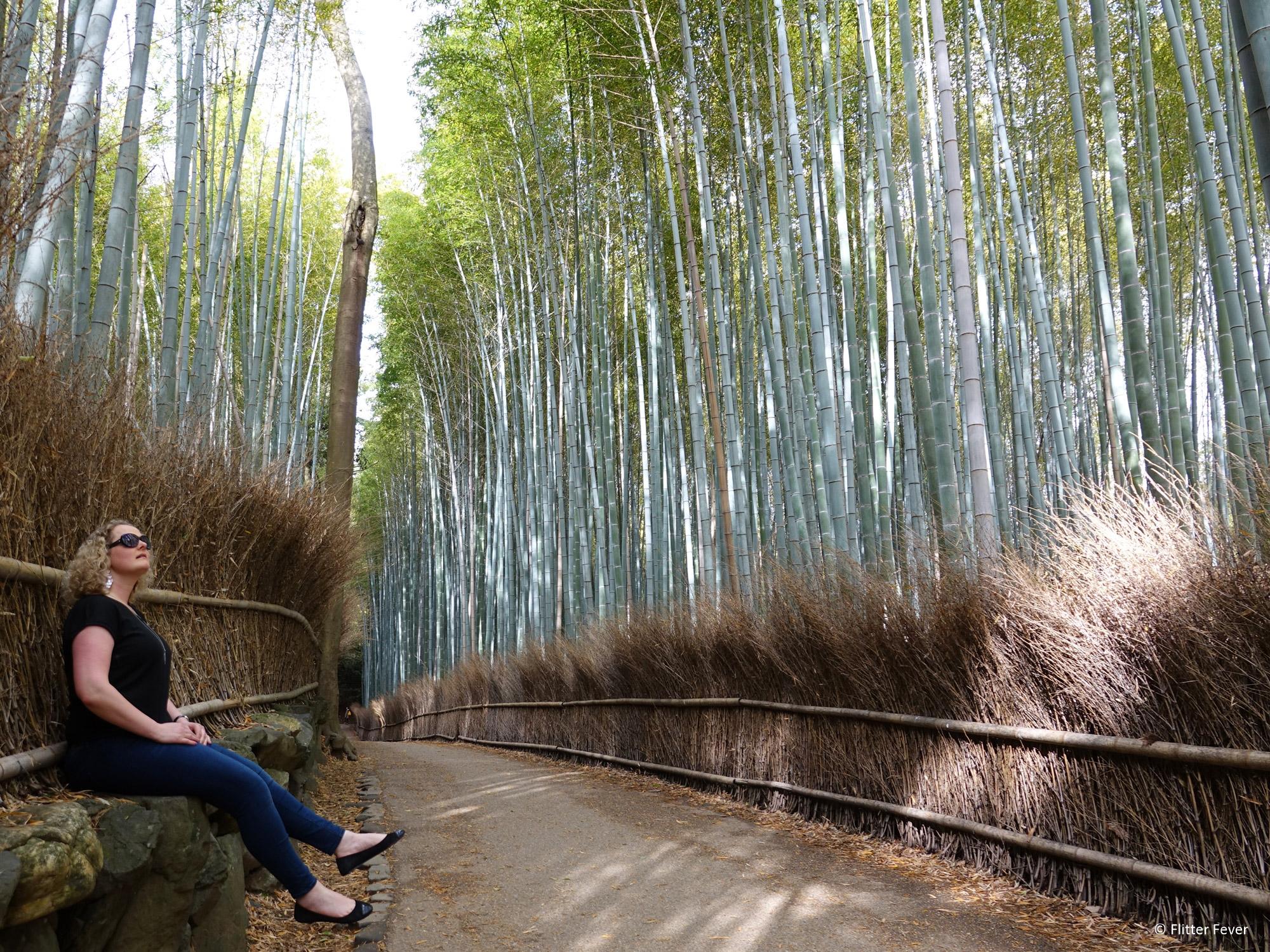 Flitter Fever - Arashiyama Bamboo Grove Kyoto