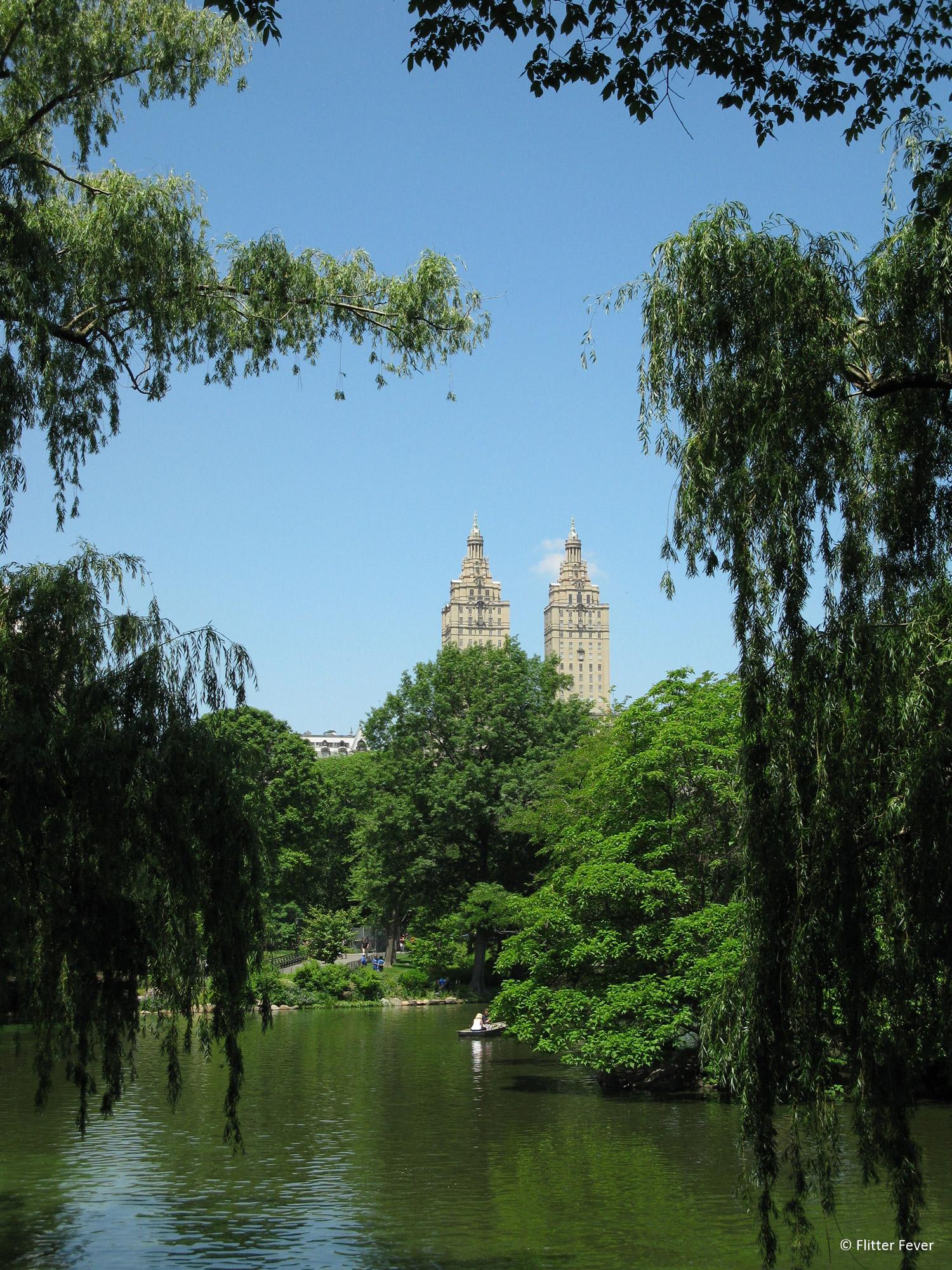 Flitter Fever - Central Park in New York