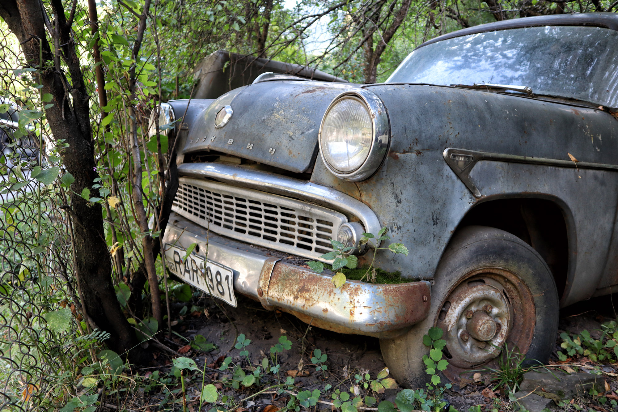 Passanuri Auto Museum - Georgië