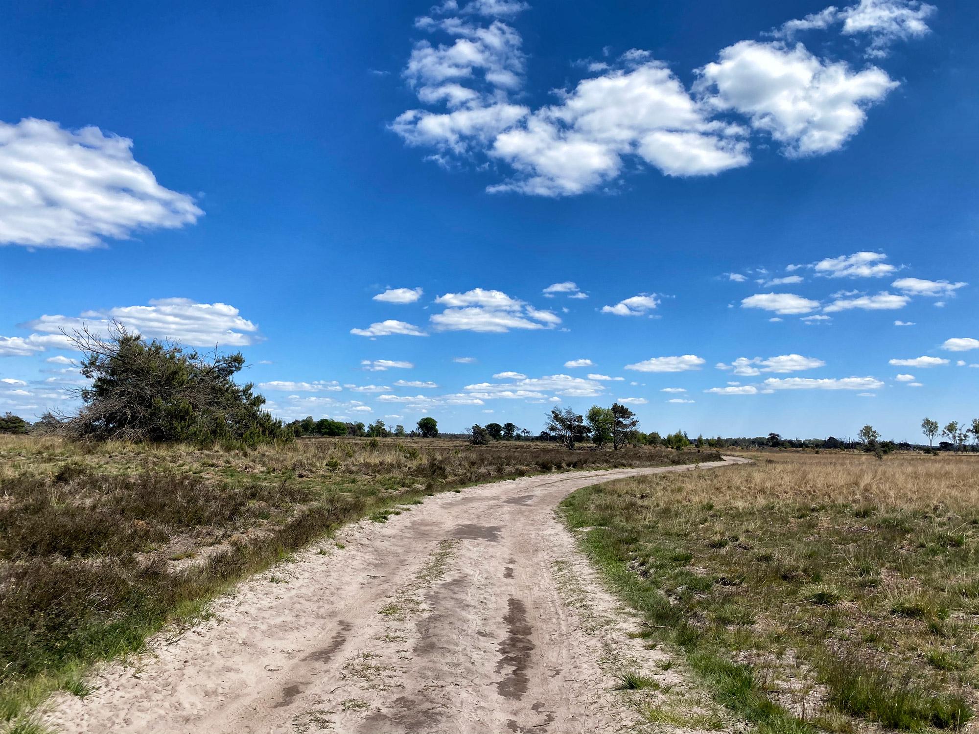 Heide en vennen route in Geldrop - Strabrechtse Heide