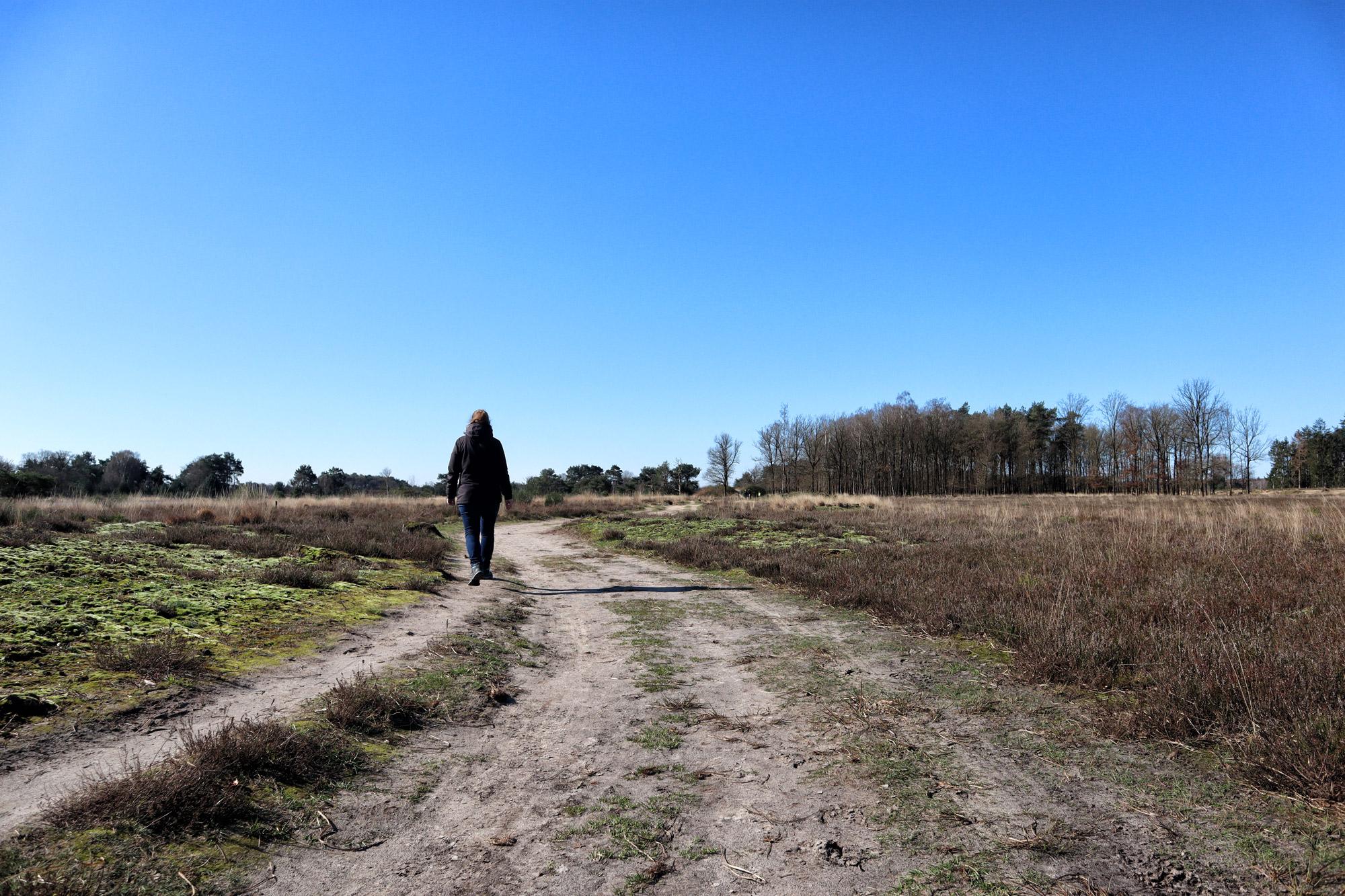 Wandeling: Huisvennenroute in de Kampina