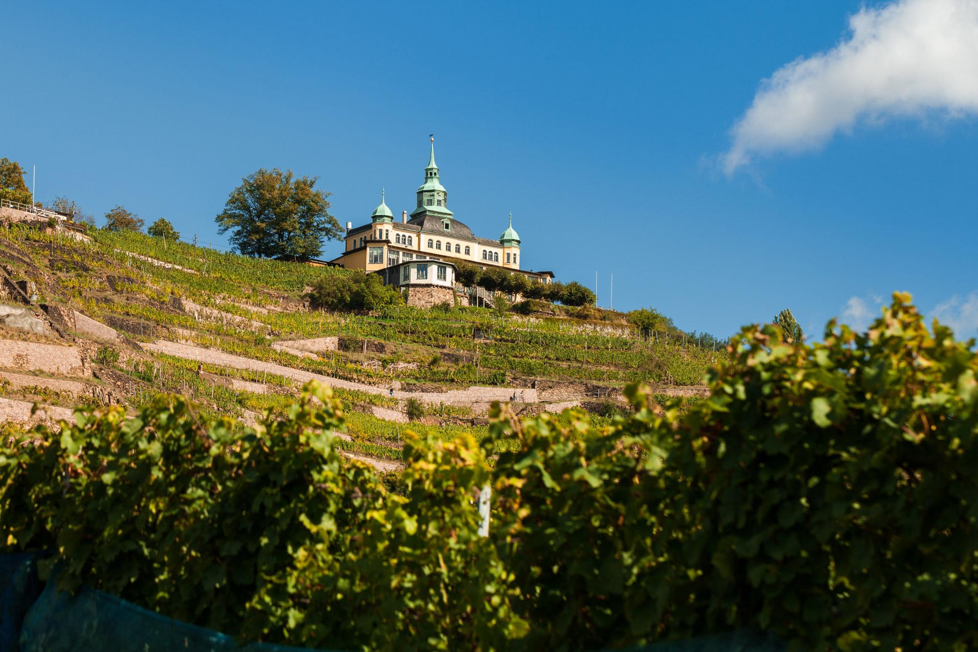 De mooiste steden in Saksen - Radebeul