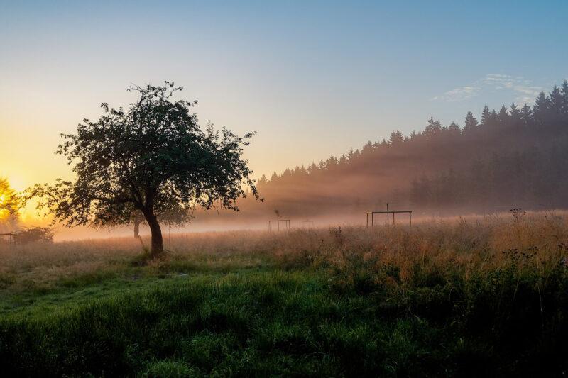 De mooiste plekken in de Ardennen