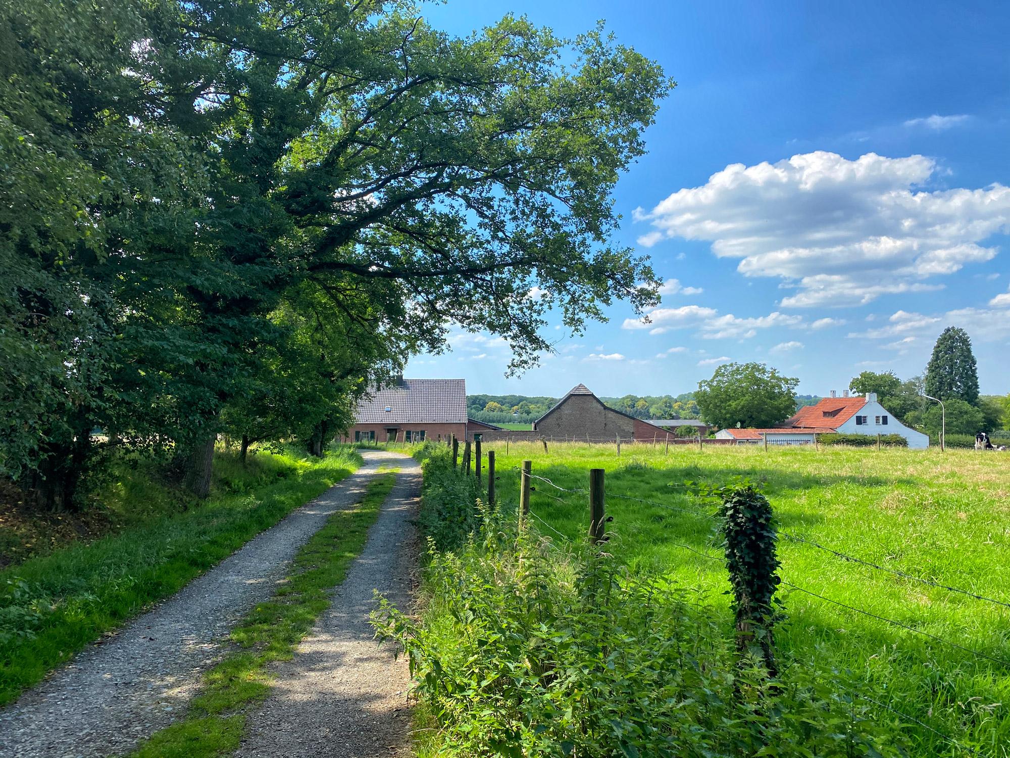 Wandeling: Rondje om de Krickenbecker Seen