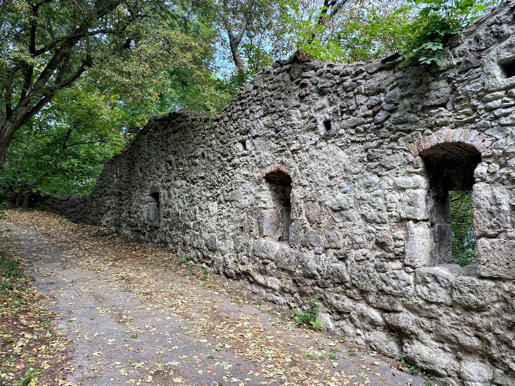 Burgruïne Drachenfels