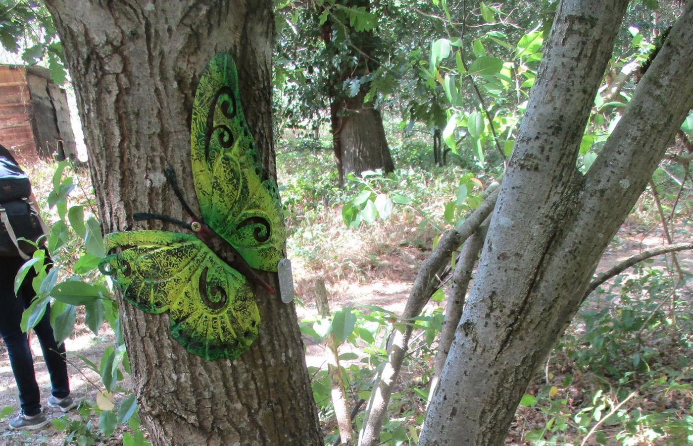 GeoKars & GEOrgCACHING - Vlinder