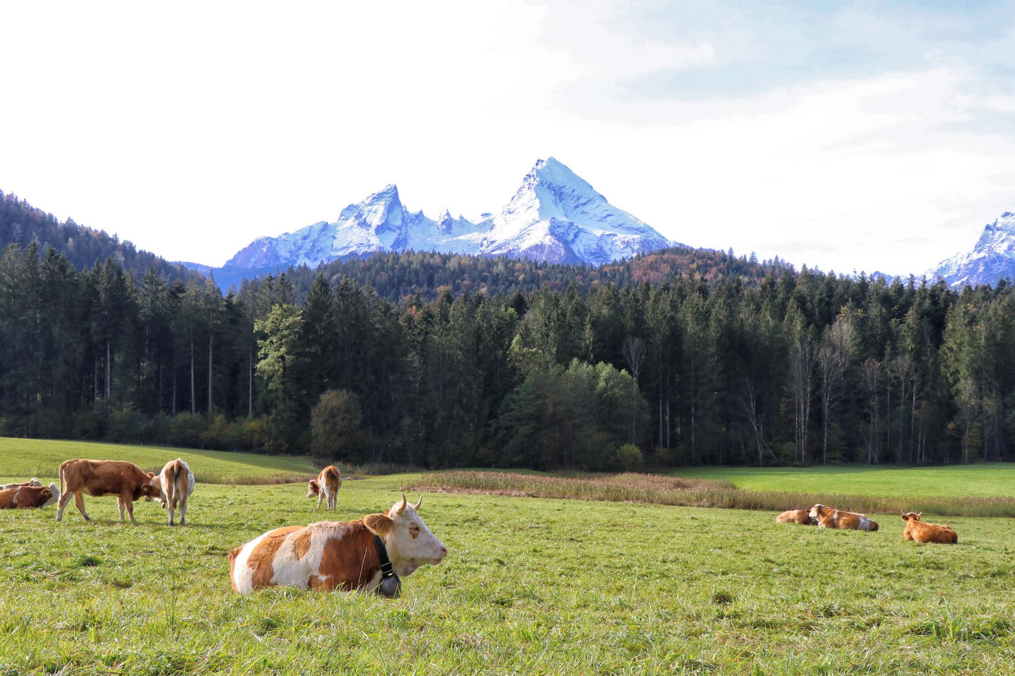 3 dagen in Zuid-Beieren - Berchtesgadener Land