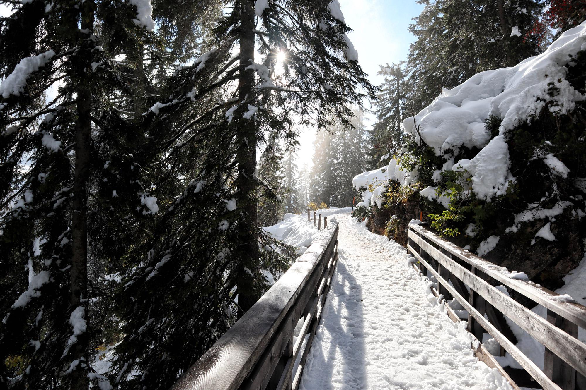 Berchtesgadener Land - Predigtstuhl