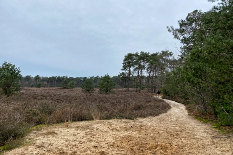 Wandelen in Noord-Brabant: Boswachterij de Kempen
